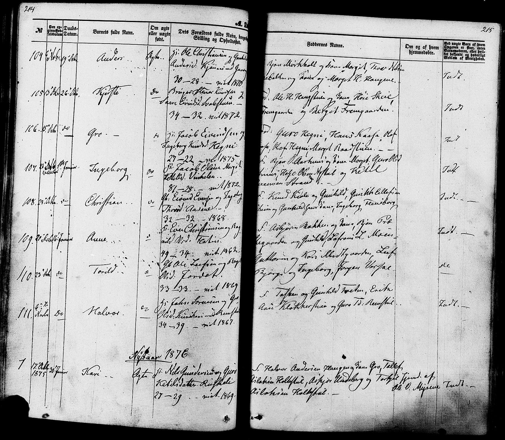 SAKO, Seljord kirkebøker, F/Fa/L0013: Ministerialbok nr. I 13, 1866-1876, s. 214-215