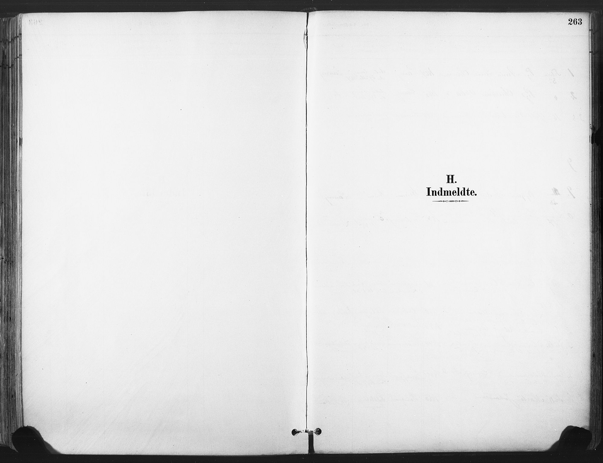 SAKO, Larvik kirkebøker, F/Fa/L0010: Ministerialbok nr. I 10, 1884-1910, s. 263