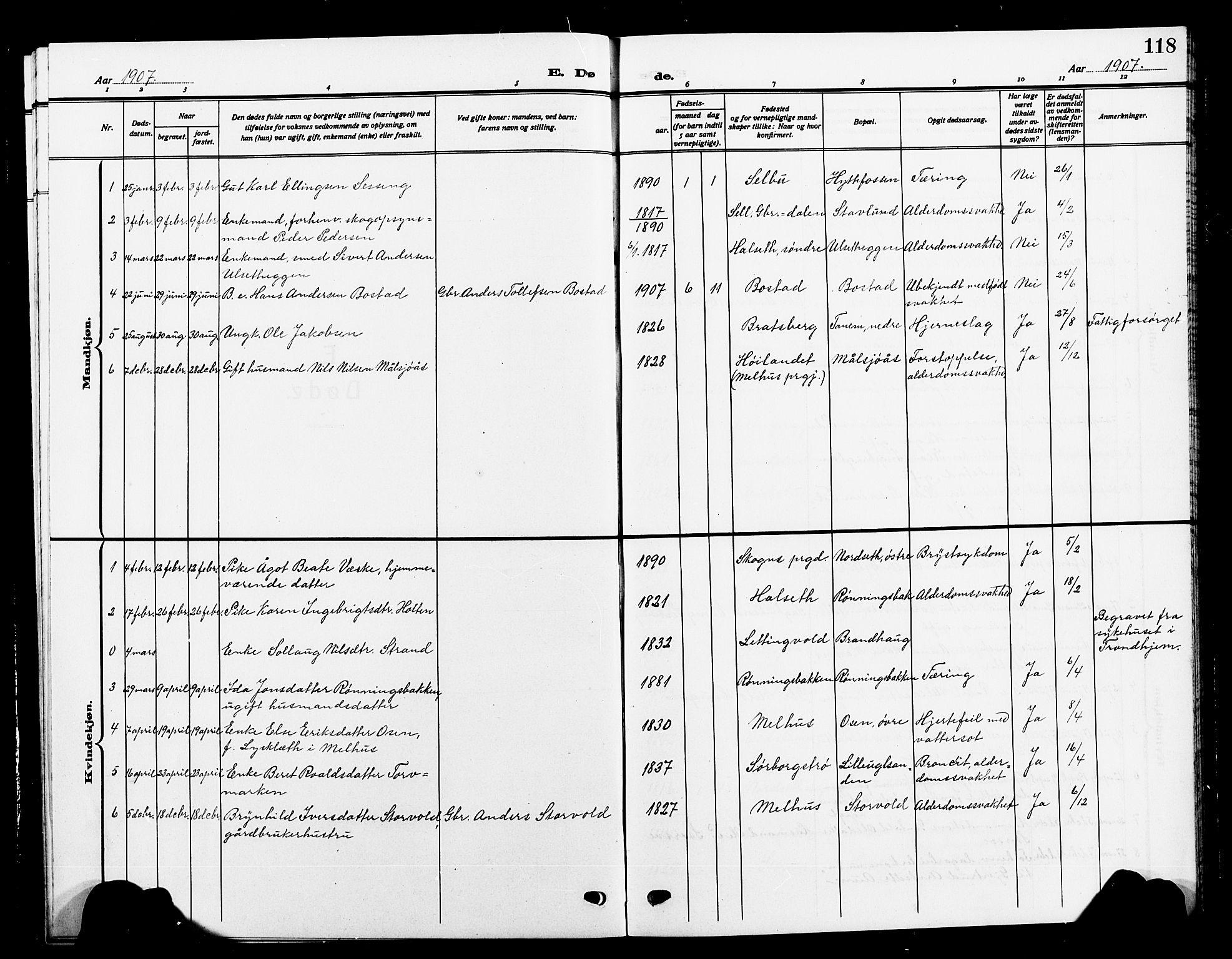 SAT, Ministerialprotokoller, klokkerbøker og fødselsregistre - Sør-Trøndelag, 618/L0453: Klokkerbok nr. 618C04, 1907-1925, s. 118