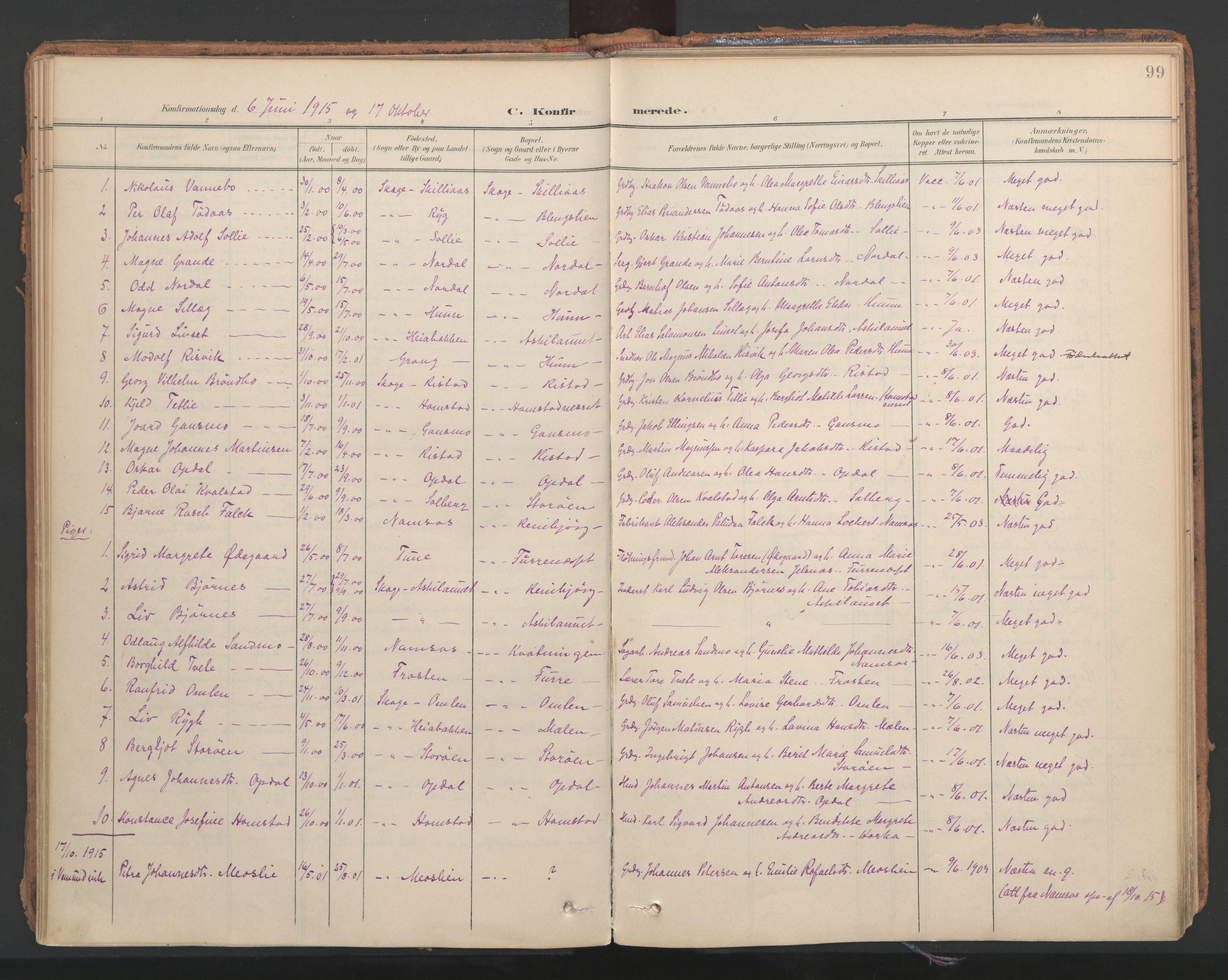 SAT, Ministerialprotokoller, klokkerbøker og fødselsregistre - Nord-Trøndelag, 766/L0564: Ministerialbok nr. 767A02, 1900-1932, s. 99
