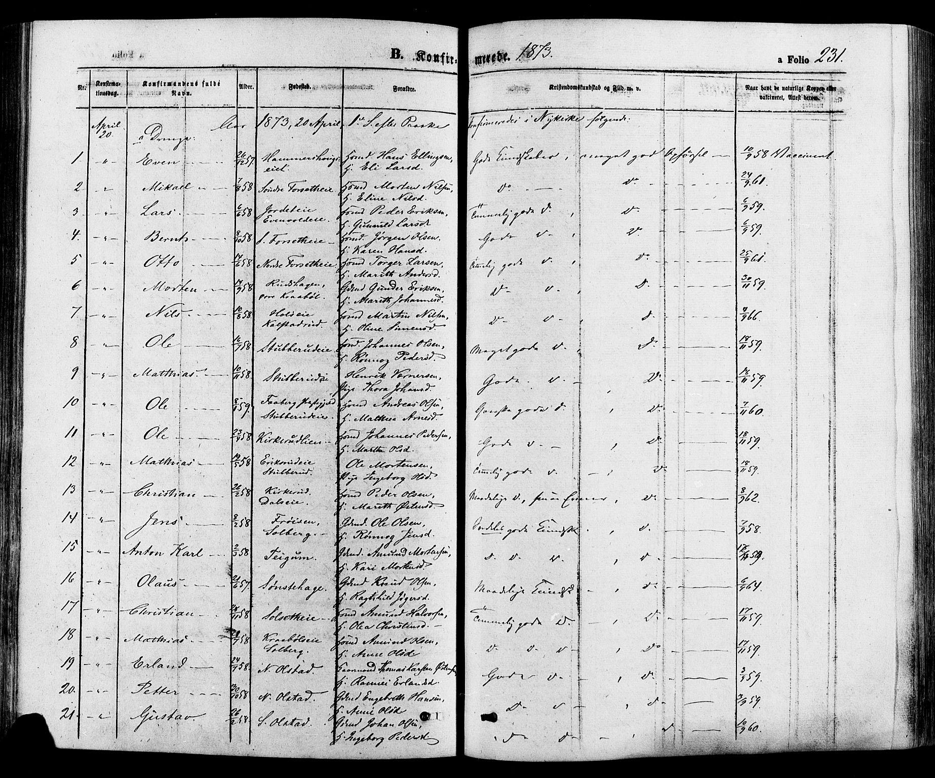 SAH, Gausdal prestekontor, Ministerialbok nr. 10, 1867-1886, s. 231
