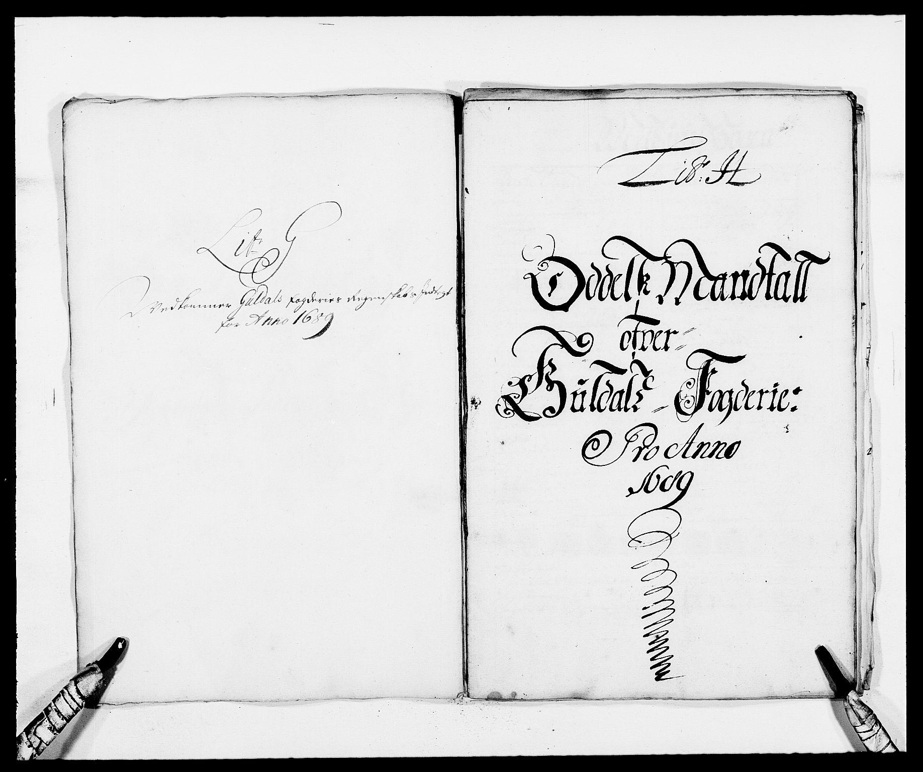RA, Rentekammeret inntil 1814, Reviderte regnskaper, Fogderegnskap, R59/L3940: Fogderegnskap Gauldal, 1689-1690, s. 82
