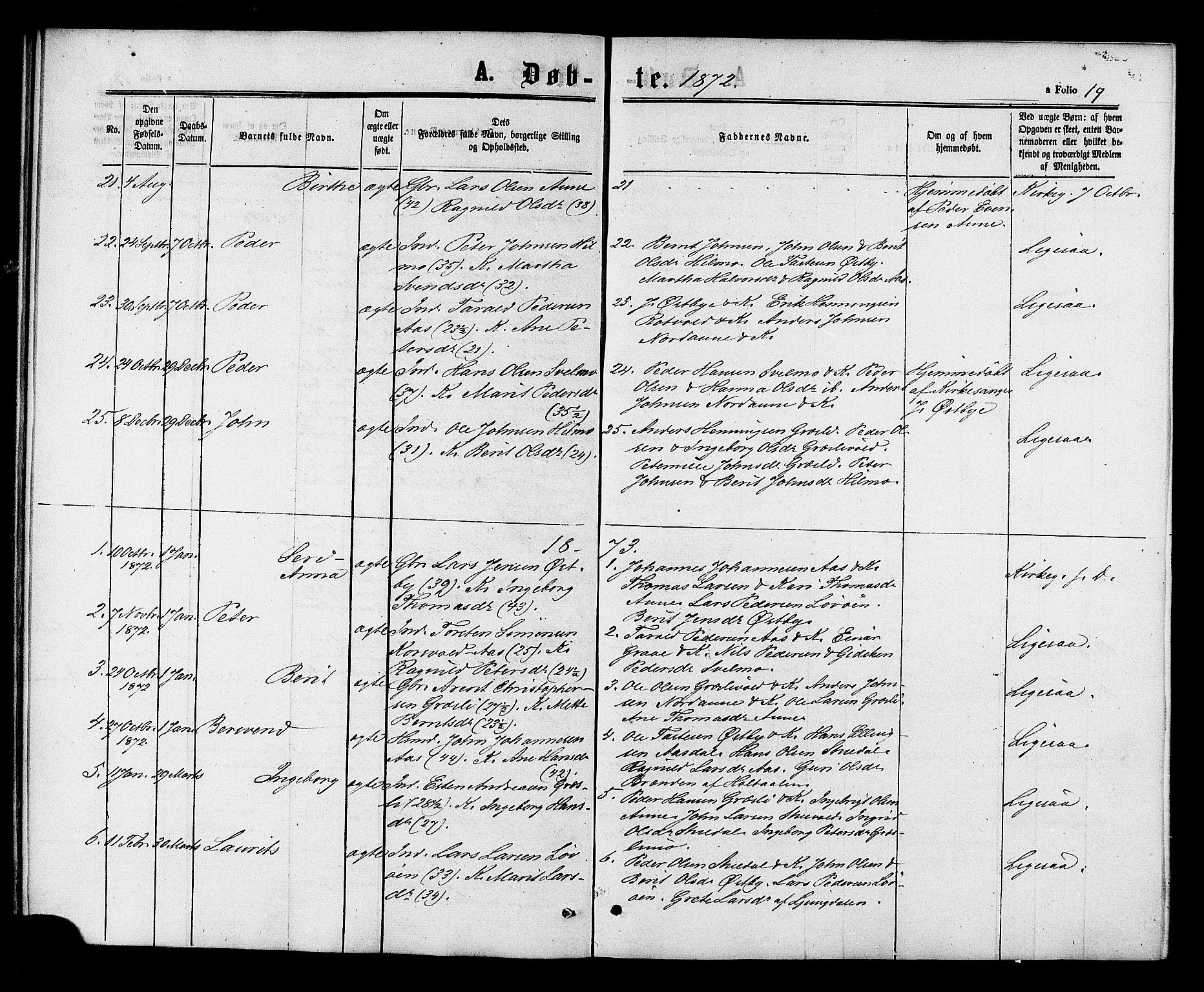 SAT, Ministerialprotokoller, klokkerbøker og fødselsregistre - Sør-Trøndelag, 698/L1163: Ministerialbok nr. 698A01, 1862-1887, s. 19