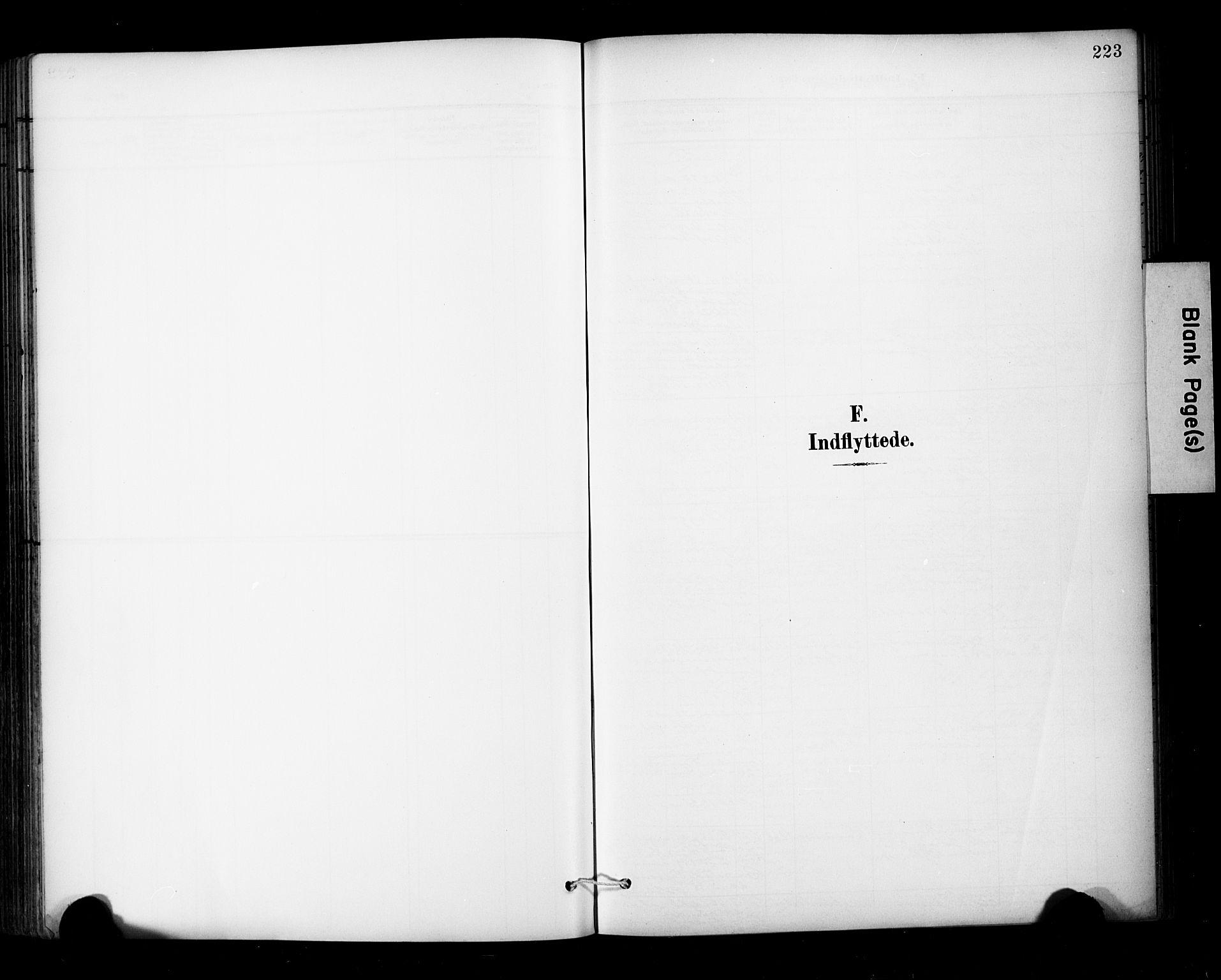 SAT, Ministerialprotokoller, klokkerbøker og fødselsregistre - Sør-Trøndelag, 681/L0936: Ministerialbok nr. 681A14, 1899-1908, s. 223