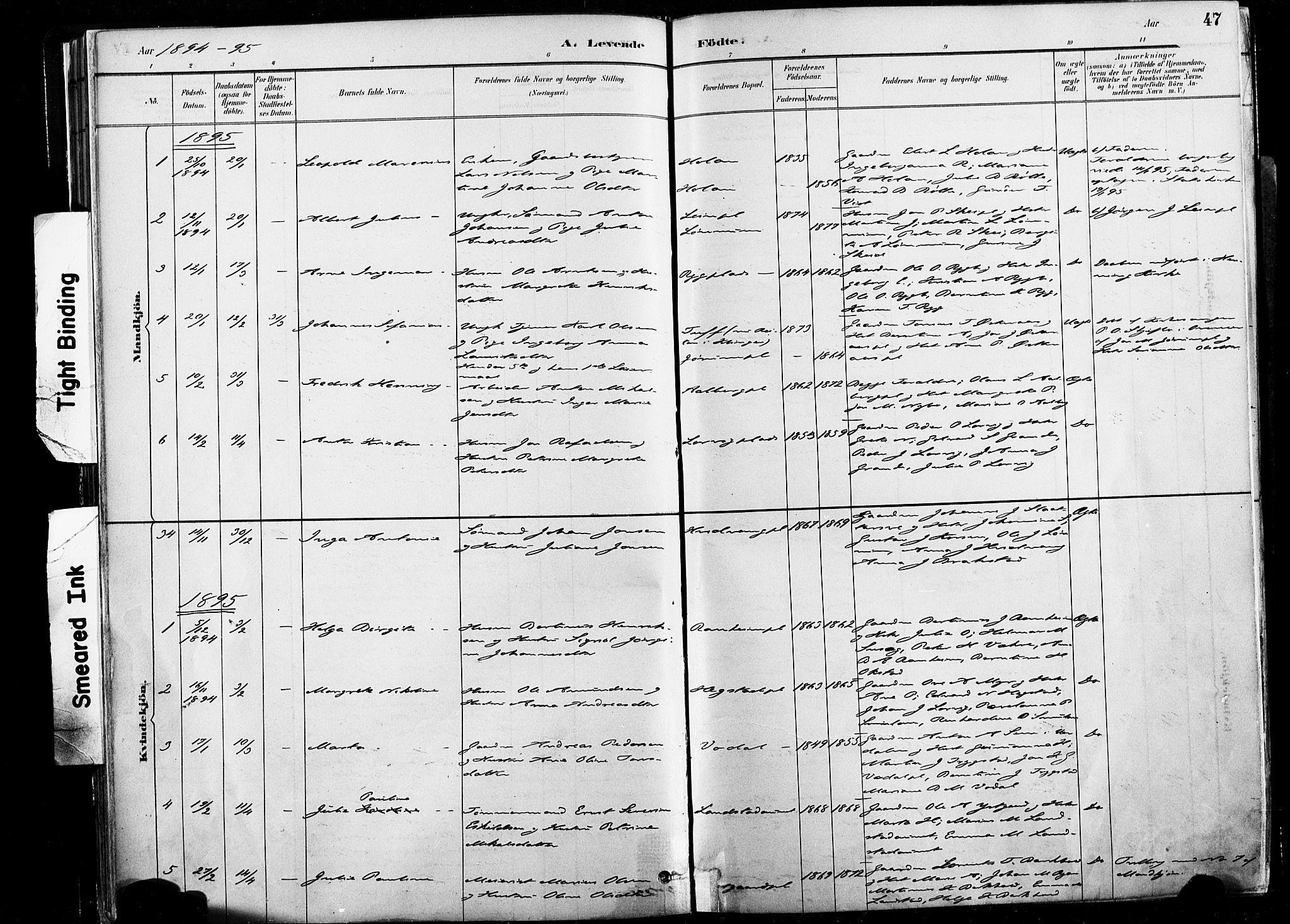 SAT, Ministerialprotokoller, klokkerbøker og fødselsregistre - Nord-Trøndelag, 735/L0351: Ministerialbok nr. 735A10, 1884-1908, s. 47
