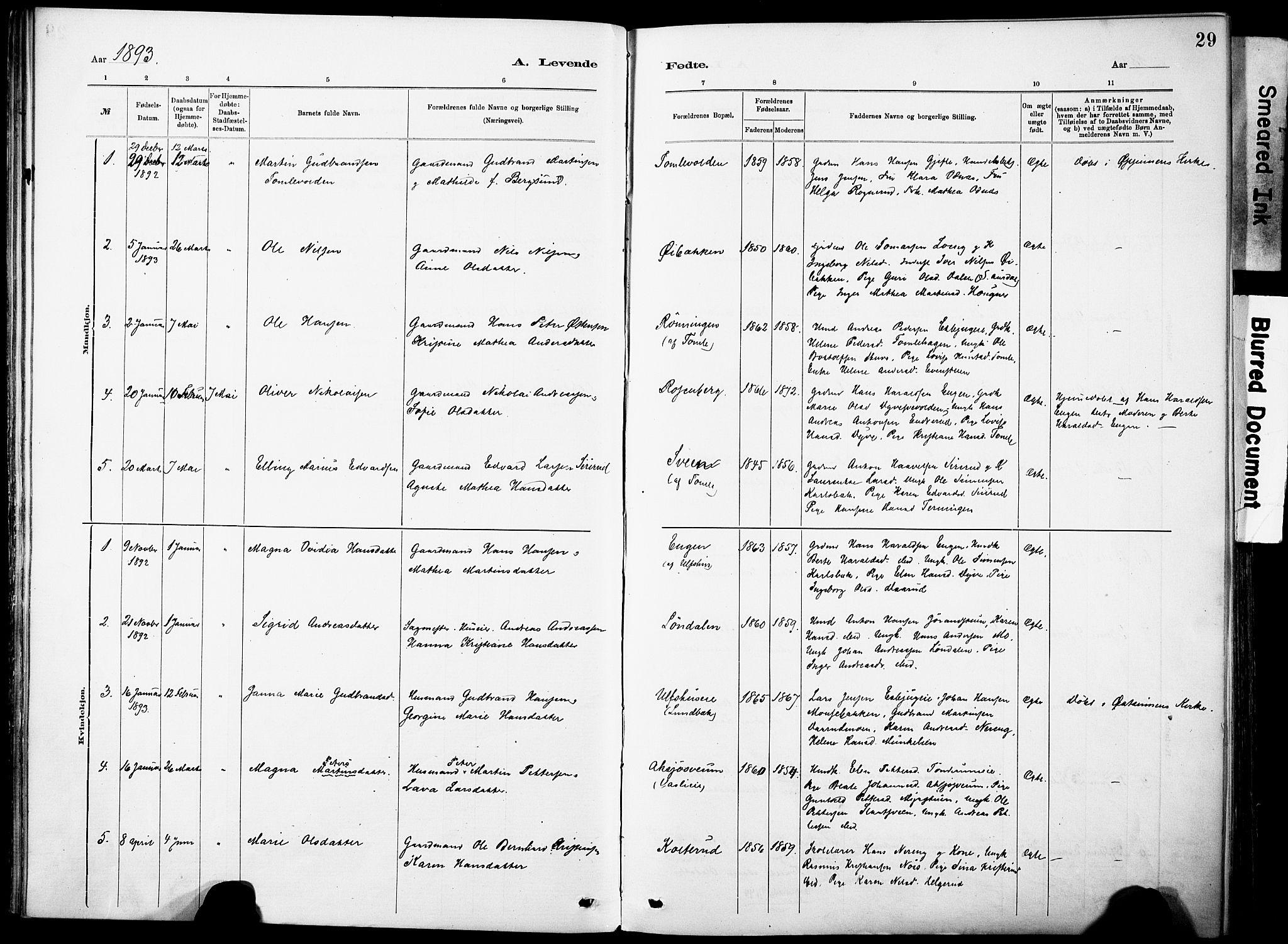 SAH, Nordre Land prestekontor, Ministerialbok nr. 5, 1882-1903, s. 29