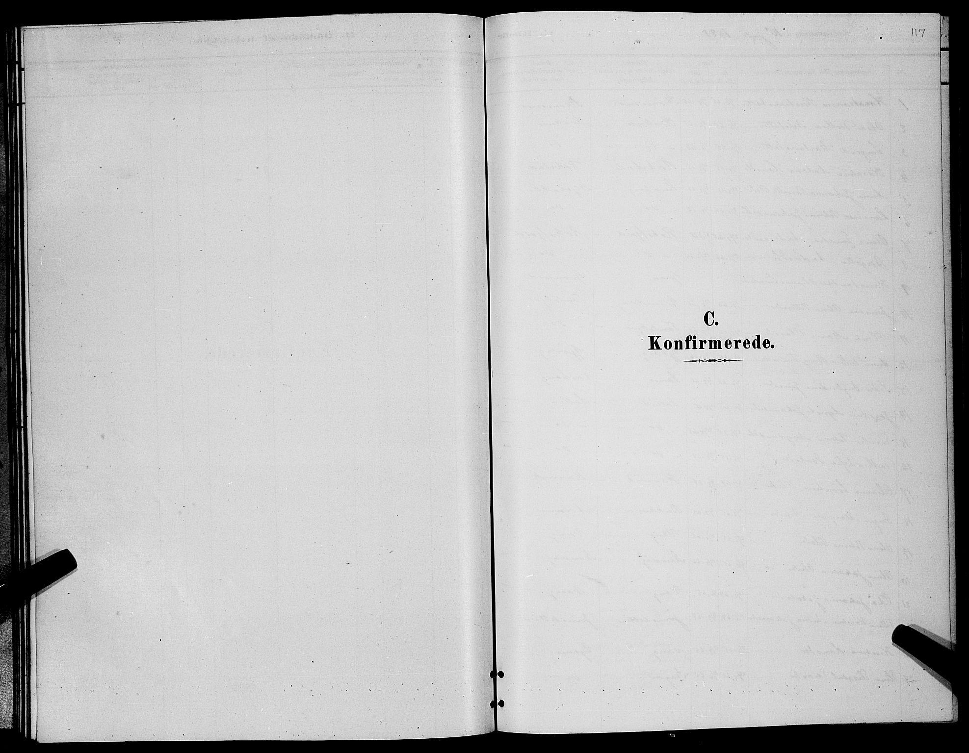 SATØ, Lenvik sokneprestembete, H/Ha: Klokkerbok nr. 6, 1881-1889, s. 117