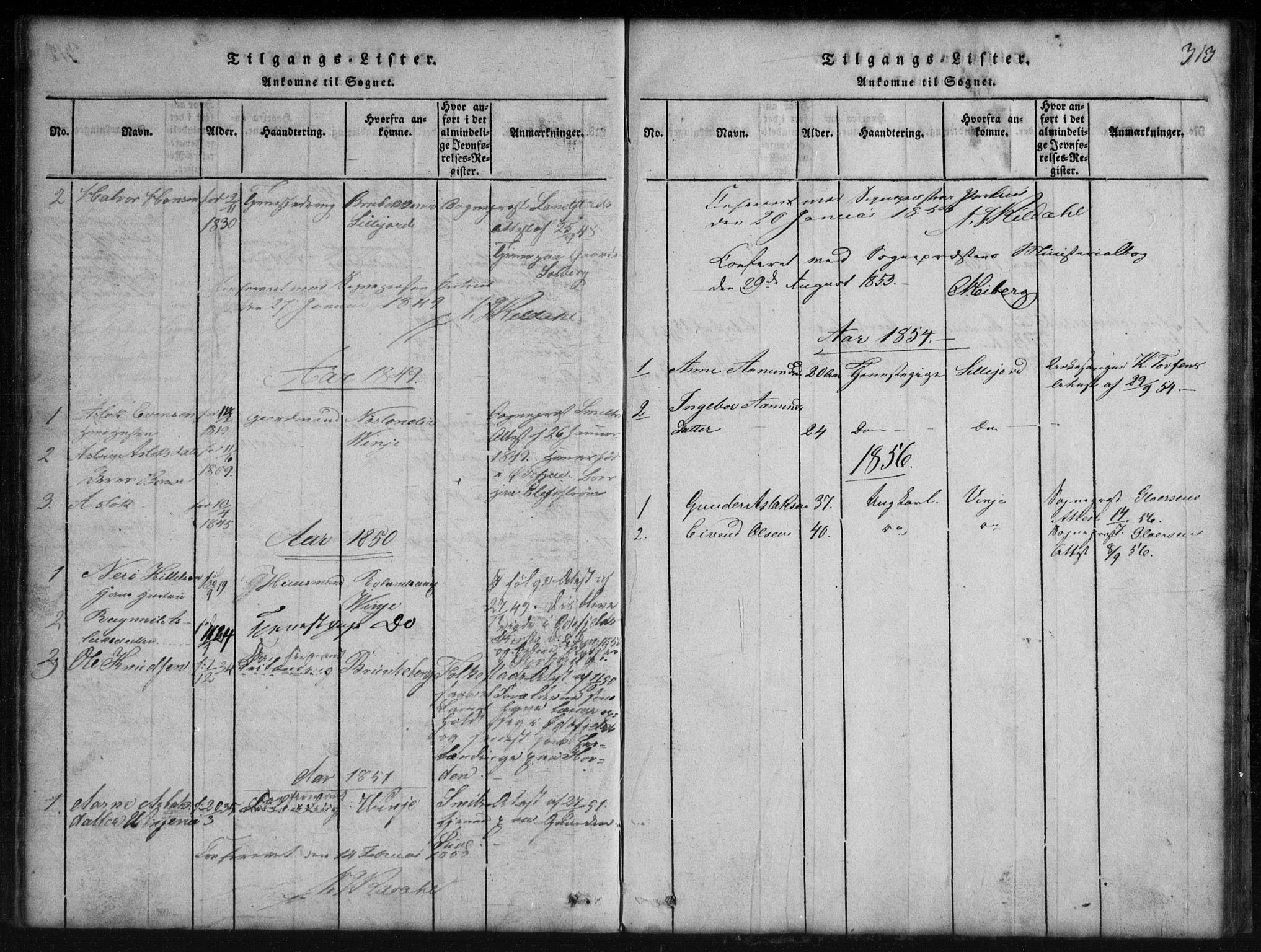 SAKO, Rauland kirkebøker, G/Gb/L0001: Klokkerbok nr. II 1, 1815-1886, s. 313