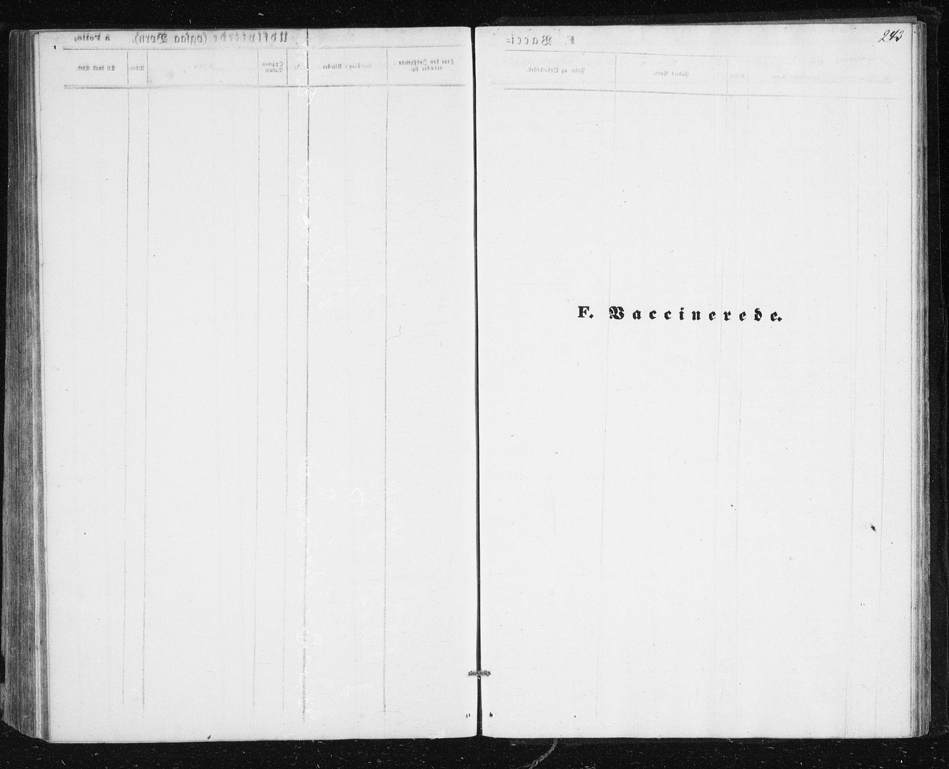 SATØ, Lenvik sokneprestembete, H/Ha: Klokkerbok nr. 4, 1859-1869, s. 243
