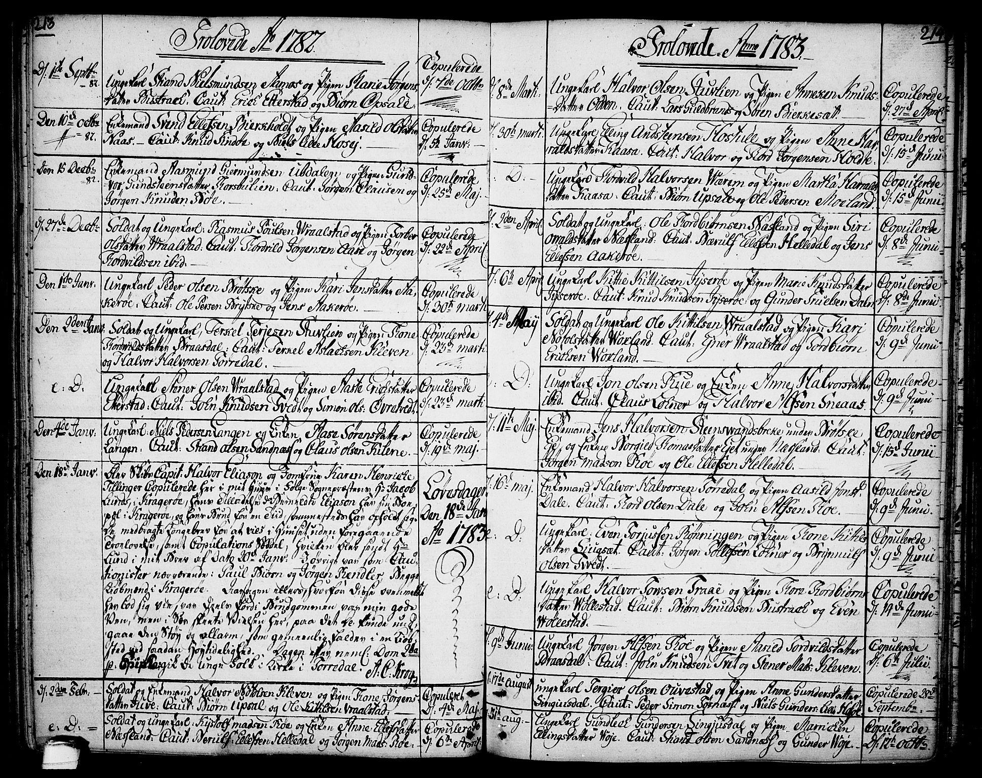 SAKO, Drangedal kirkebøker, F/Fa/L0003: Ministerialbok nr. 3, 1768-1814, s. 213-214