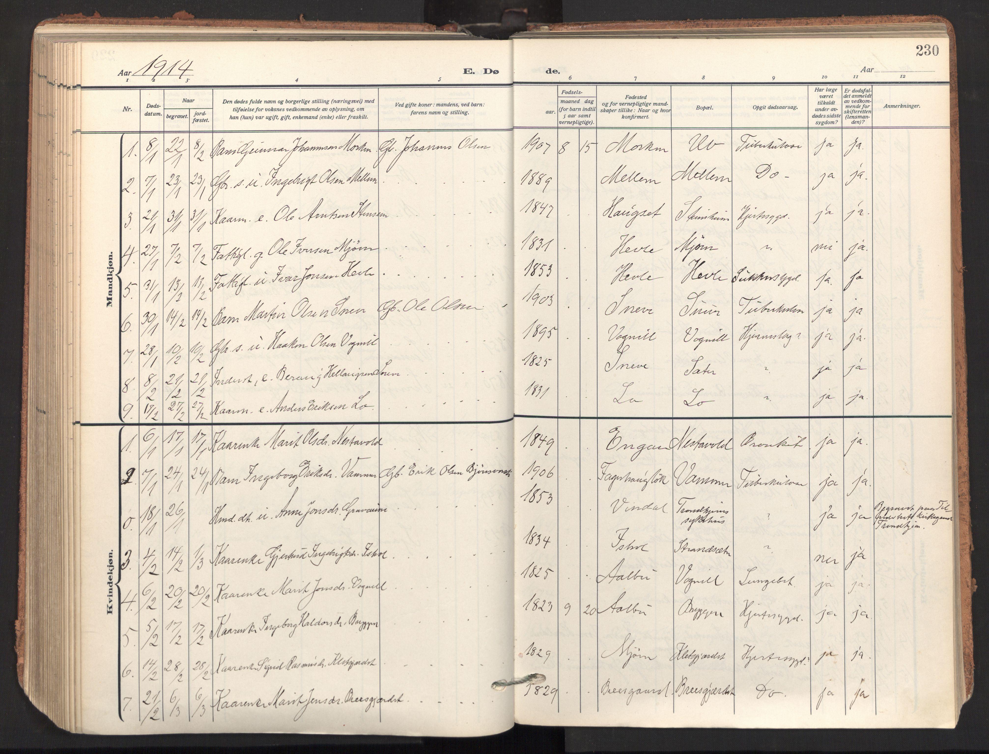 SAT, Ministerialprotokoller, klokkerbøker og fødselsregistre - Sør-Trøndelag, 678/L0909: Ministerialbok nr. 678A17, 1912-1930, s. 230