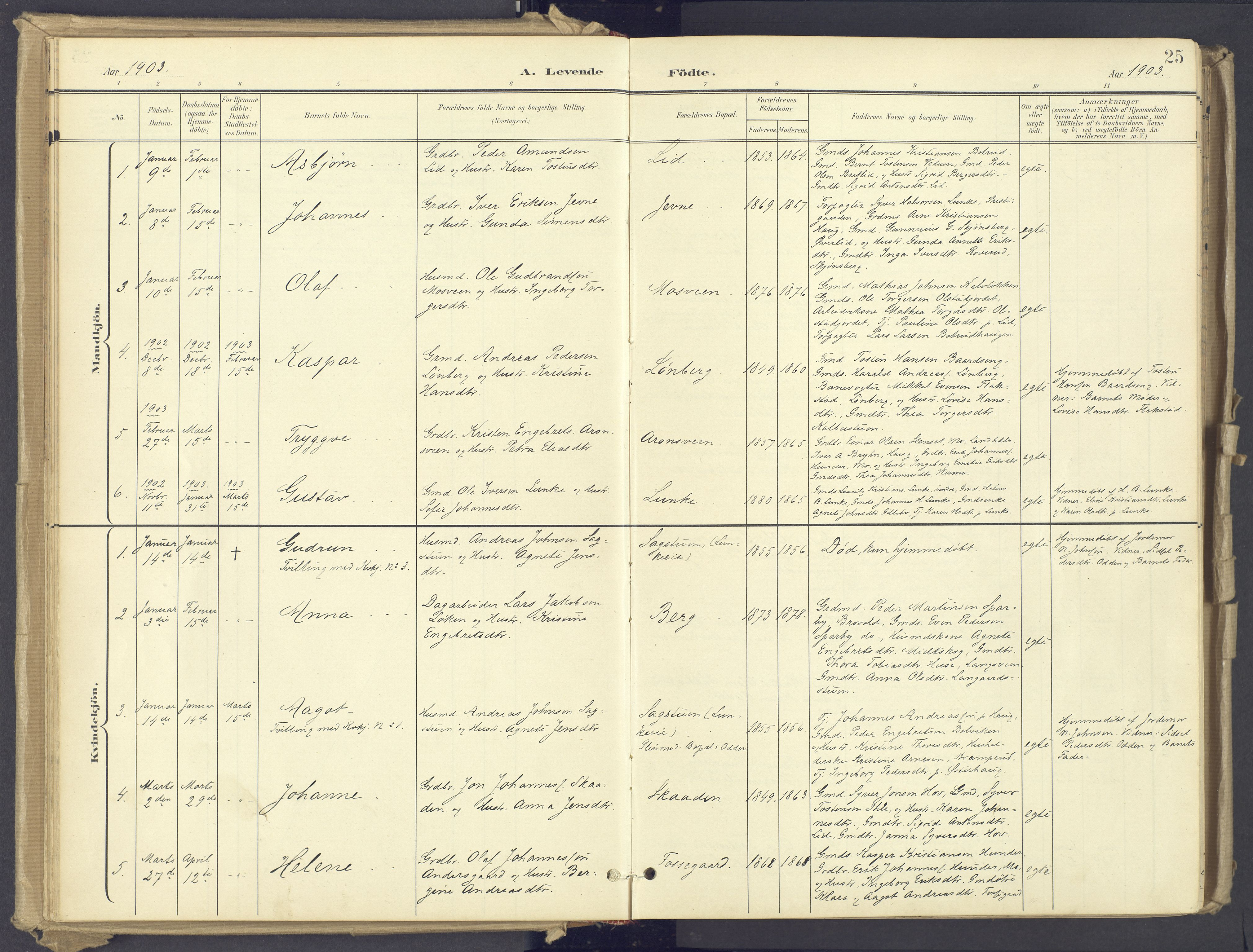 SAH, Øyer prestekontor, Ministerialbok nr. 12, 1897-1920, s. 25