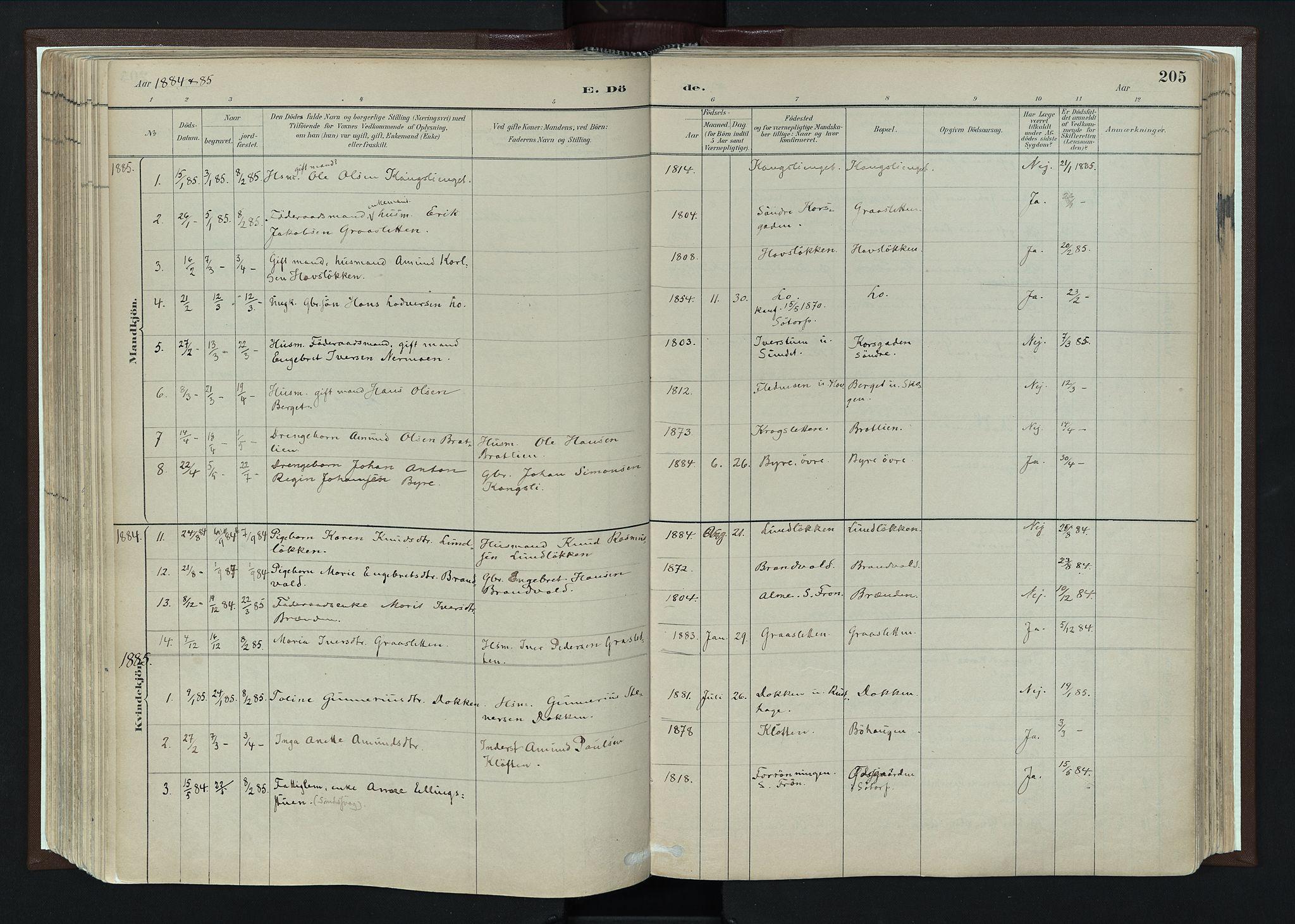 SAH, Nord-Fron prestekontor, Ministerialbok nr. 4, 1884-1914, s. 205