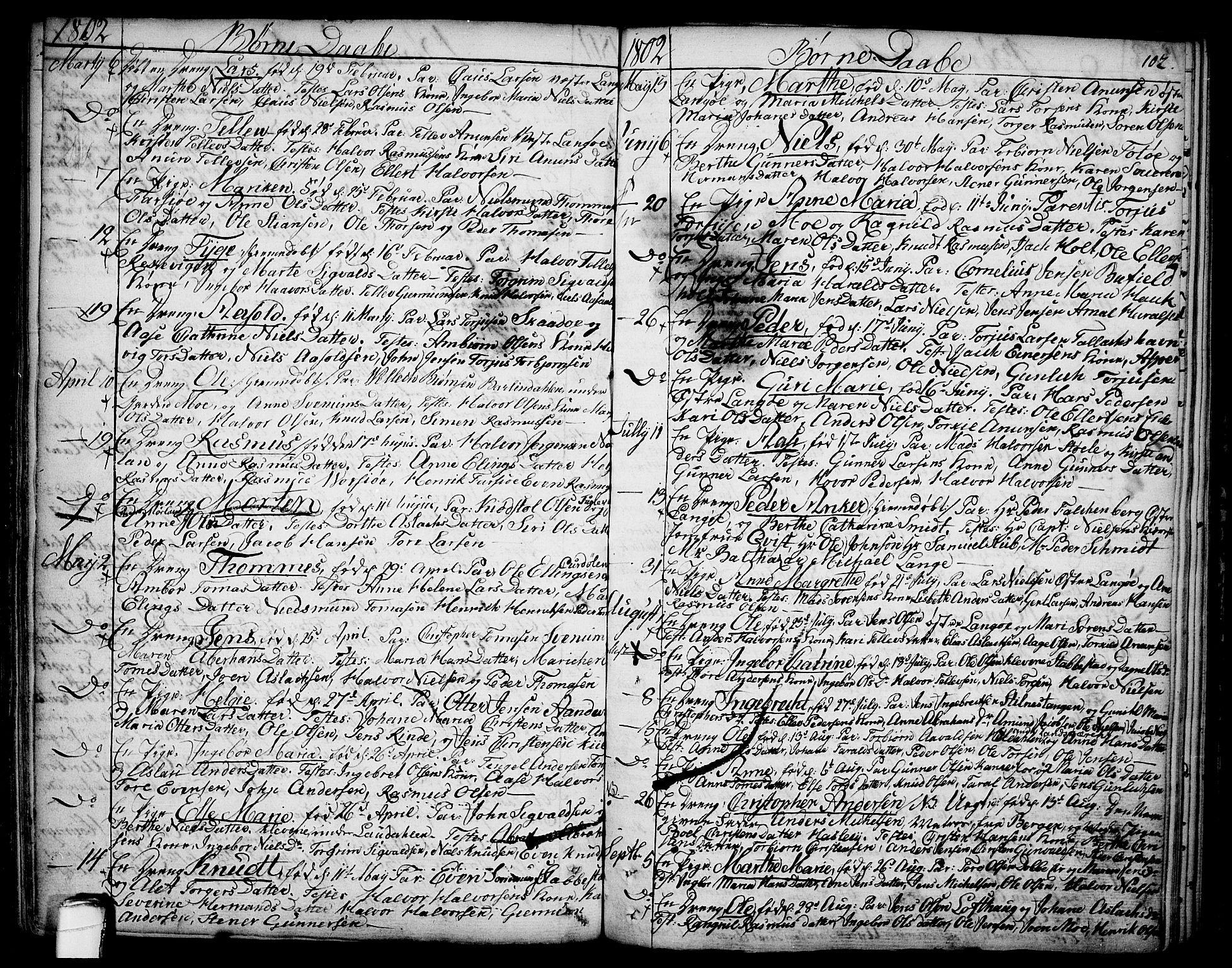 SAKO, Sannidal kirkebøker, F/Fa/L0002: Ministerialbok nr. 2, 1767-1802, s. 102