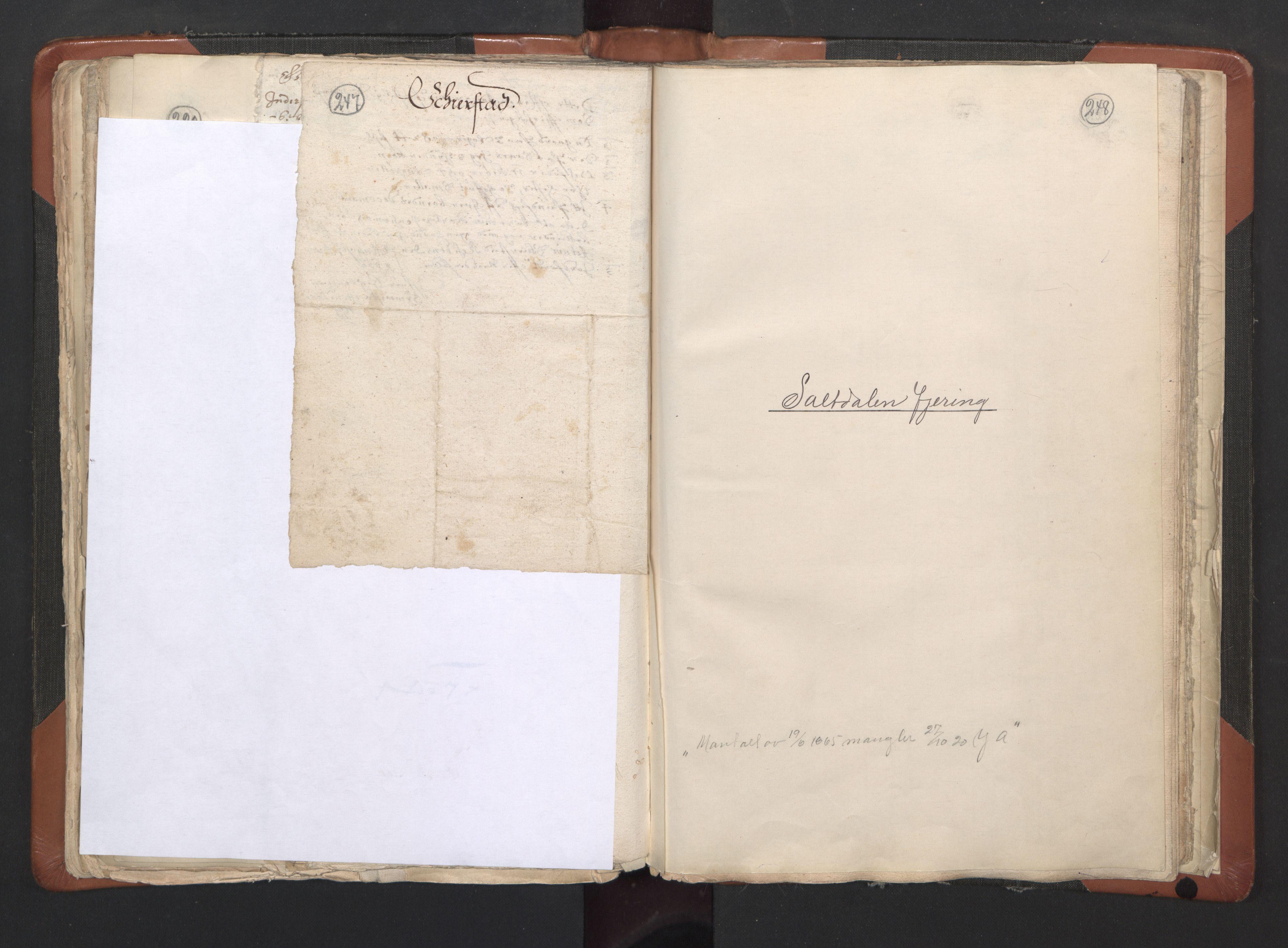 RA, Sogneprestenes manntall 1664-1666, nr. 35: Helgeland prosti og Salten prosti, 1664-1666, s. 247-248