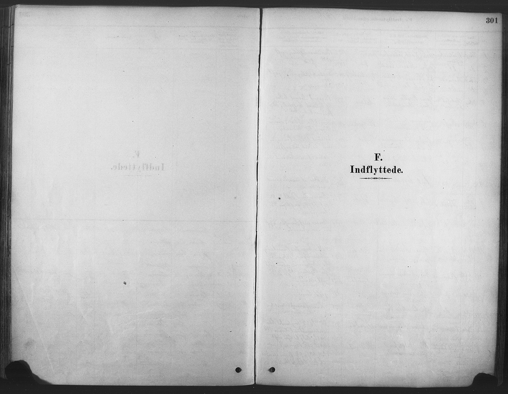 SAKO, Våle kirkebøker, F/Fa/L0011: Ministerialbok nr. I 11, 1878-1906, s. 301