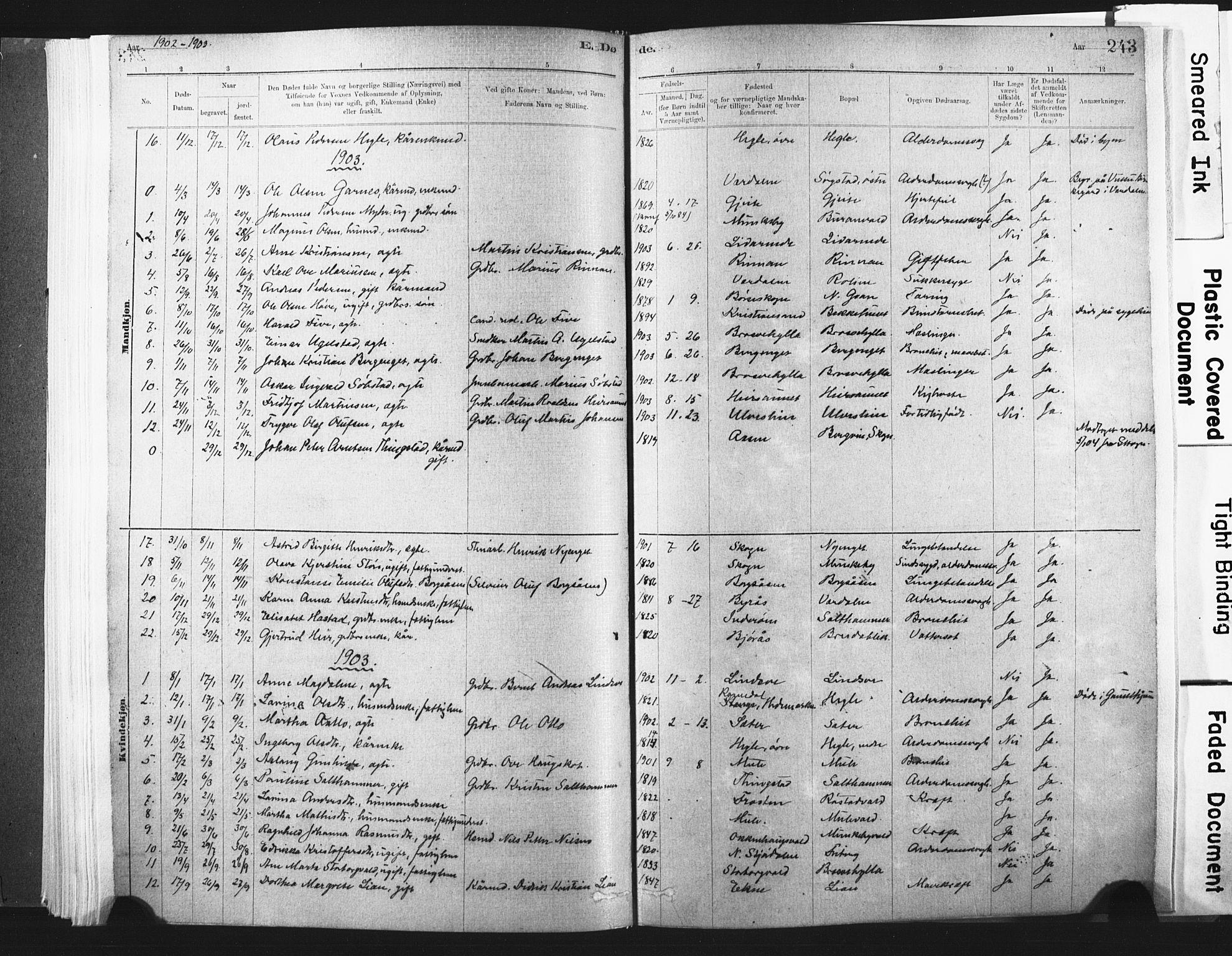 SAT, Ministerialprotokoller, klokkerbøker og fødselsregistre - Nord-Trøndelag, 721/L0207: Ministerialbok nr. 721A02, 1880-1911, s. 243