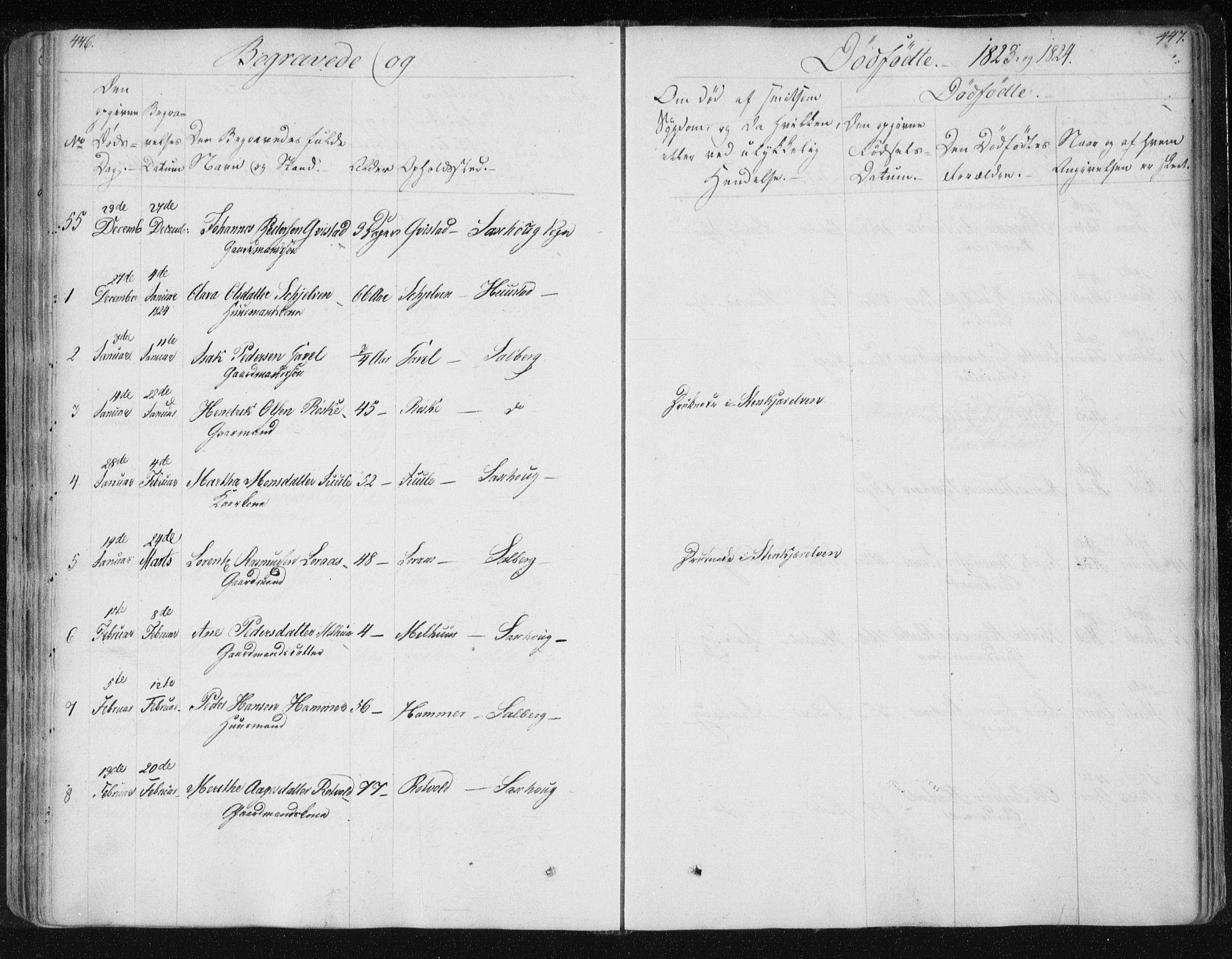 SAT, Ministerialprotokoller, klokkerbøker og fødselsregistre - Nord-Trøndelag, 730/L0276: Ministerialbok nr. 730A05, 1822-1830, s. 446-447
