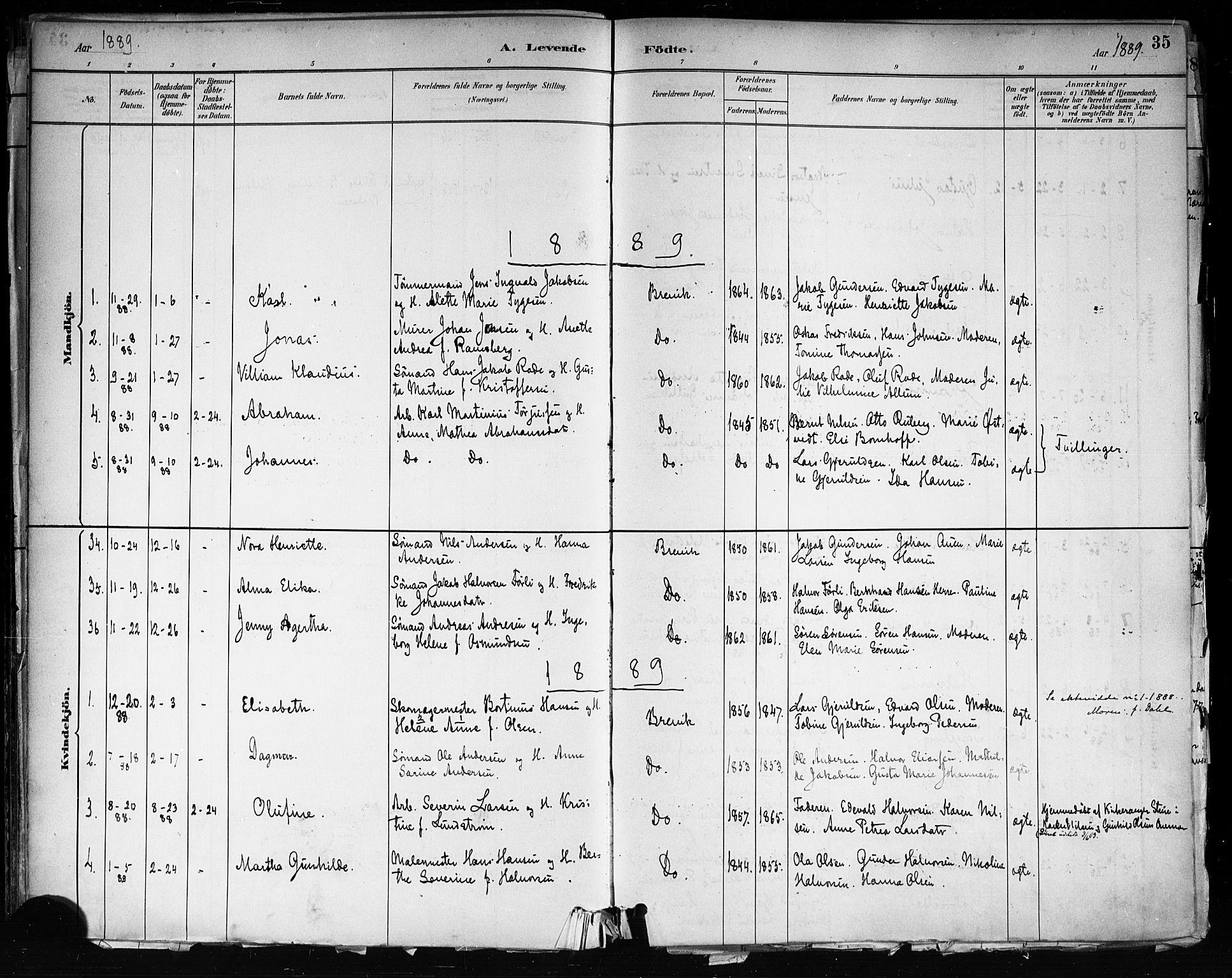 SAKO, Brevik kirkebøker, F/Fa/L0007: Ministerialbok nr. 7, 1882-1900, s. 35
