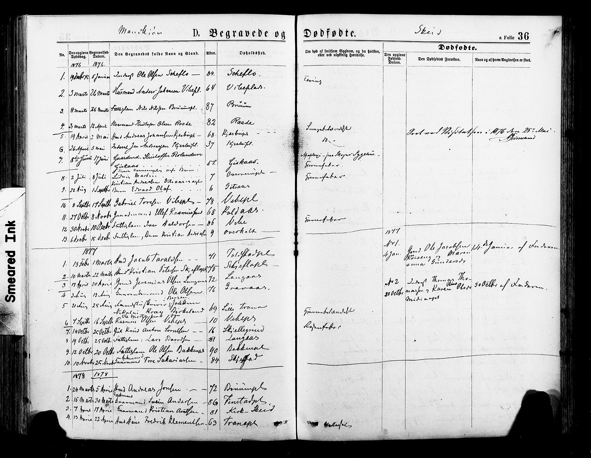 SAT, Ministerialprotokoller, klokkerbøker og fødselsregistre - Nord-Trøndelag, 735/L0348: Ministerialbok nr. 735A09 /2, 1873-1883, s. 36
