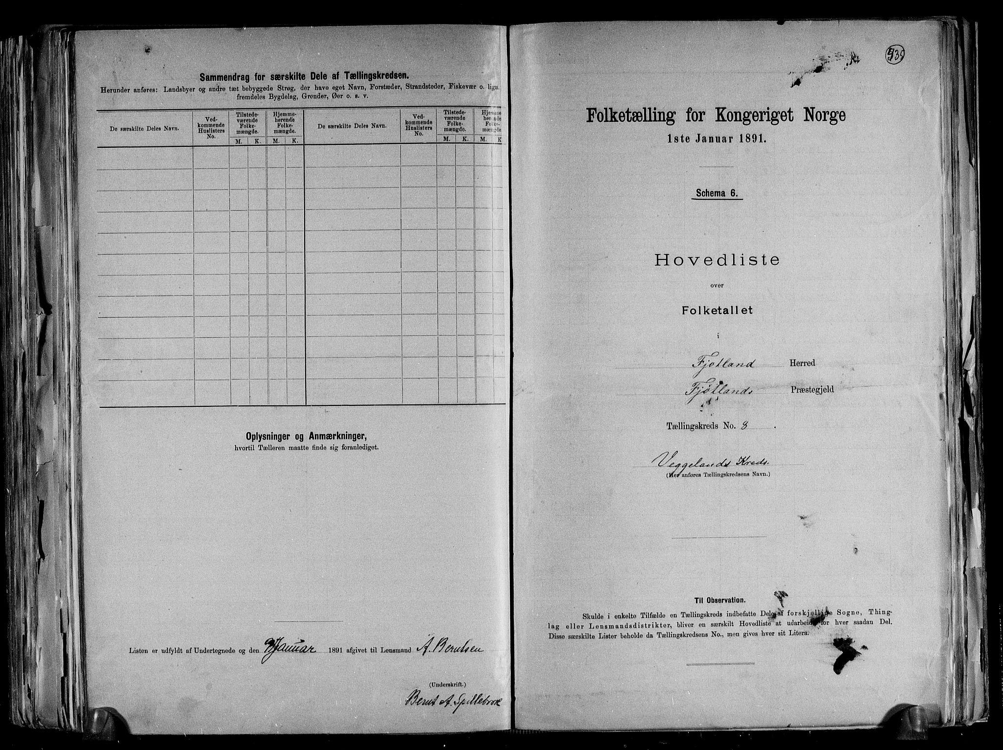 RA, Folketelling 1891 for 1036 Fjotland herred, 1891, s. 19