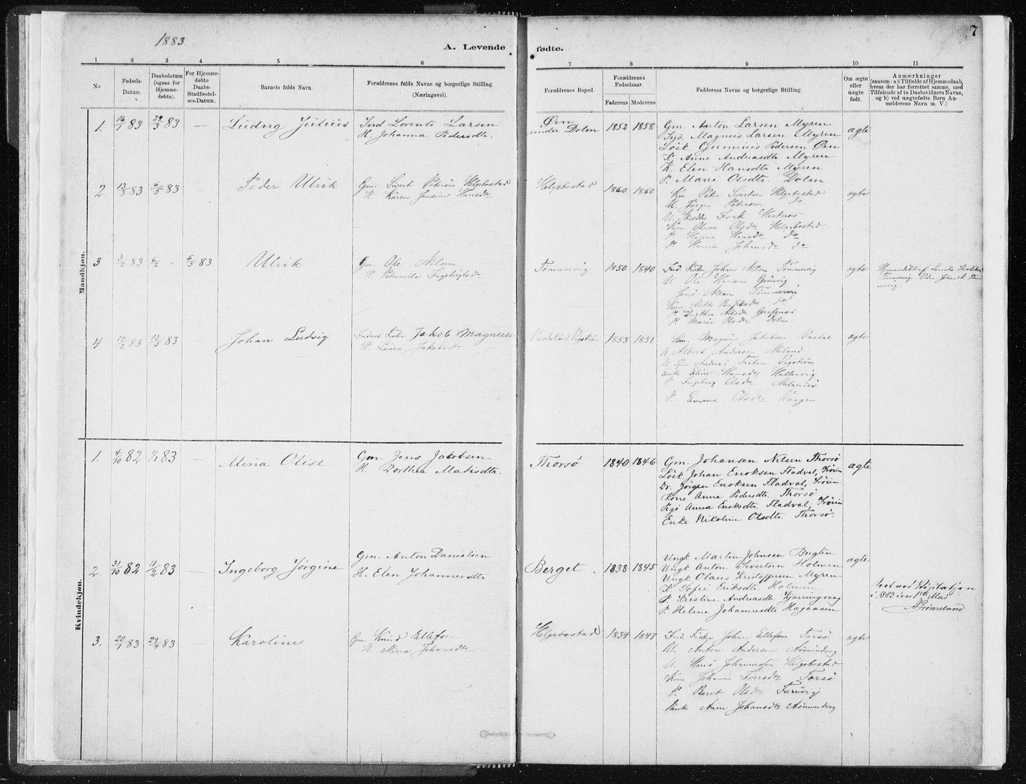 SAT, Ministerialprotokoller, klokkerbøker og fødselsregistre - Sør-Trøndelag, 634/L0533: Ministerialbok nr. 634A09, 1882-1901, s. 7