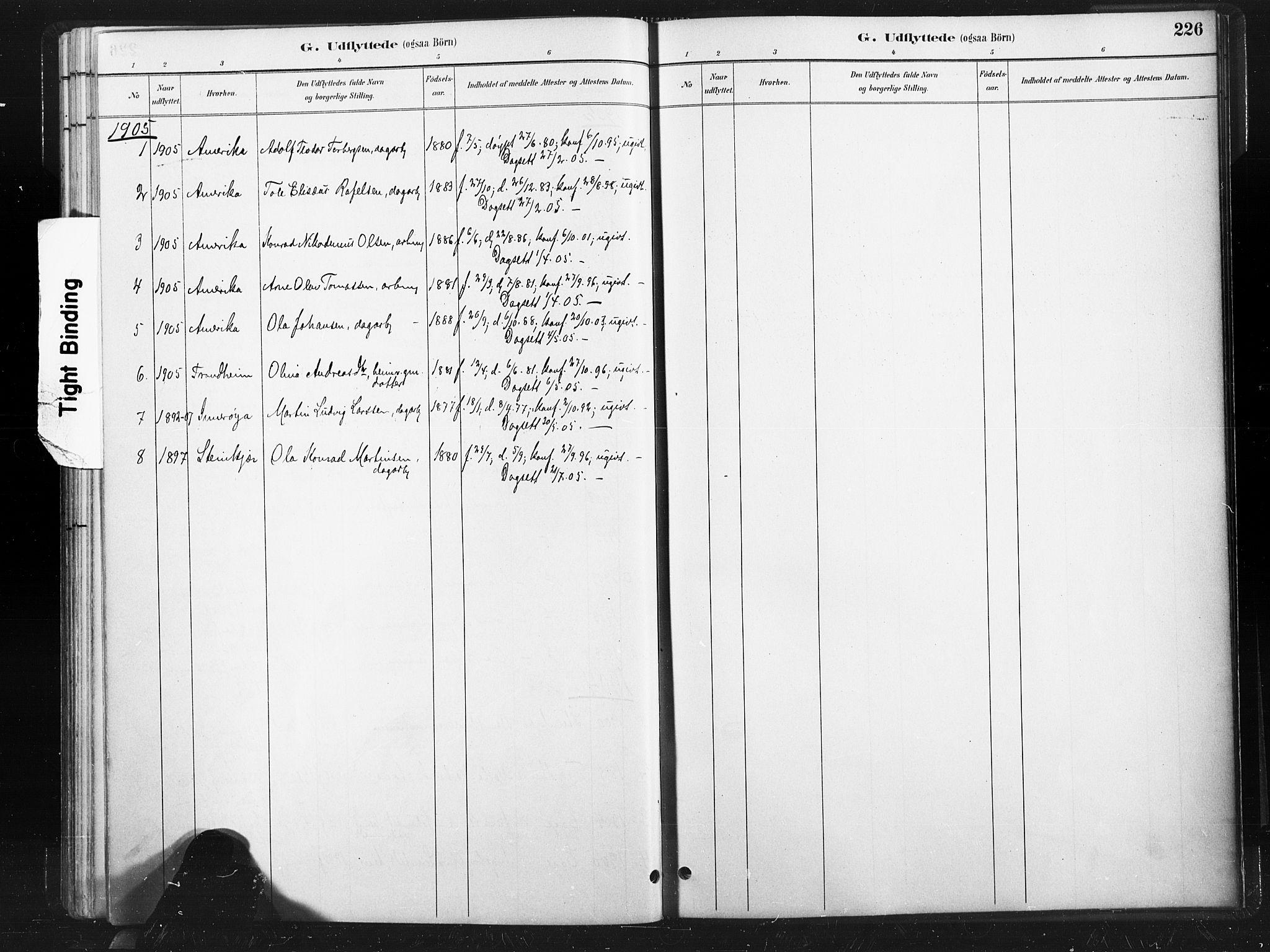 SAT, Ministerialprotokoller, klokkerbøker og fødselsregistre - Nord-Trøndelag, 736/L0361: Ministerialbok nr. 736A01, 1884-1906, s. 226