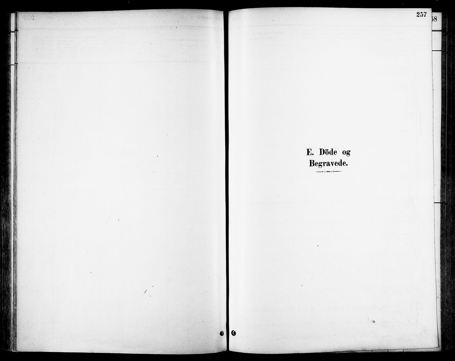 SAT, Ministerialprotokoller, klokkerbøker og fødselsregistre - Sør-Trøndelag, 678/L0901: Ministerialbok nr. 678A10, 1881-1894, s. 257