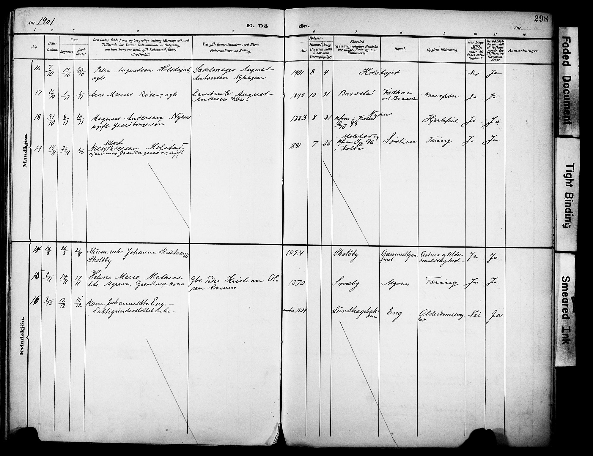 SAH, Vestre Toten prestekontor, H/Ha/Haa/L0013: Ministerialbok nr. 13, 1895-1911, s. 298