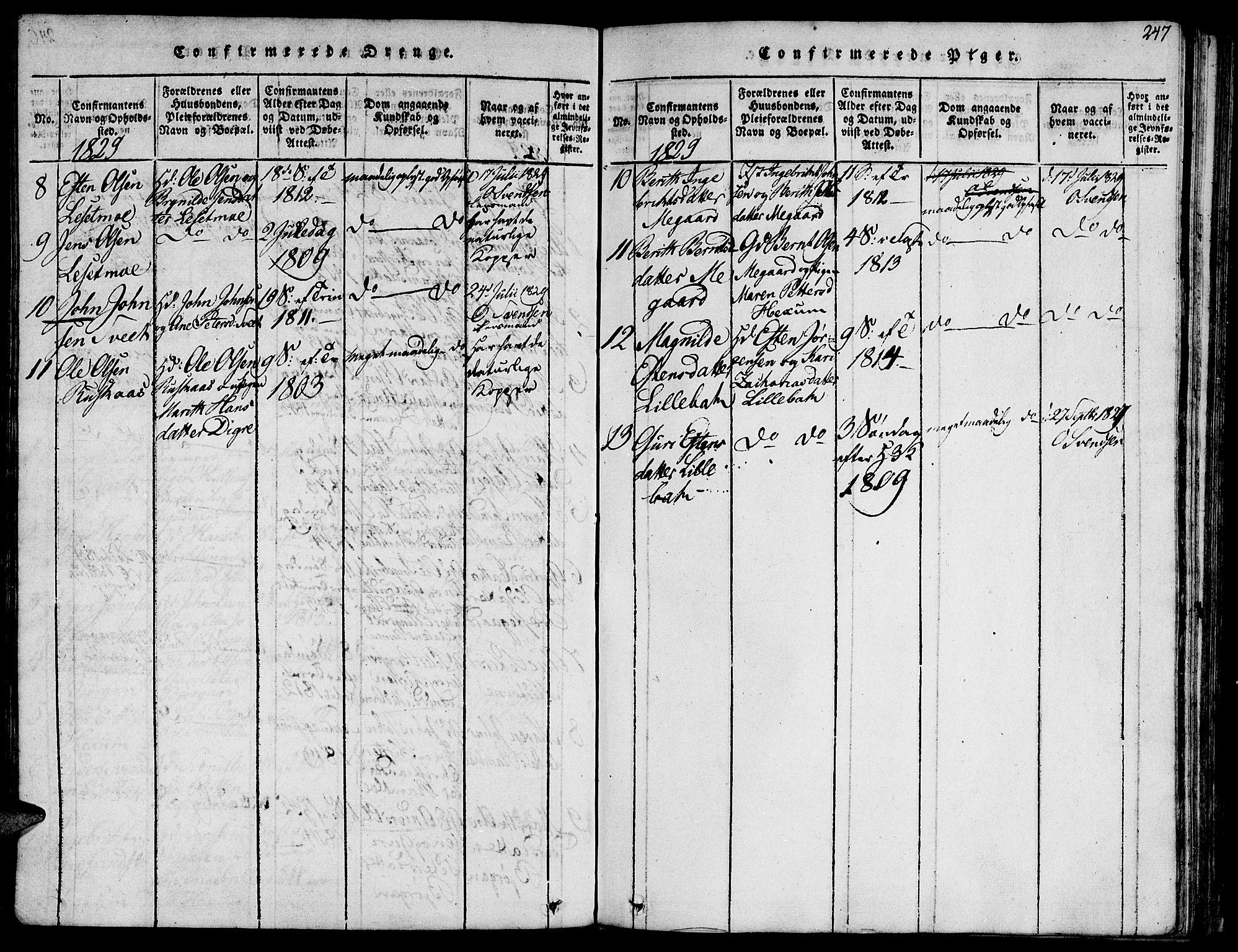 SAT, Ministerialprotokoller, klokkerbøker og fødselsregistre - Sør-Trøndelag, 685/L0954: Ministerialbok nr. 685A03 /1, 1817-1829, s. 247
