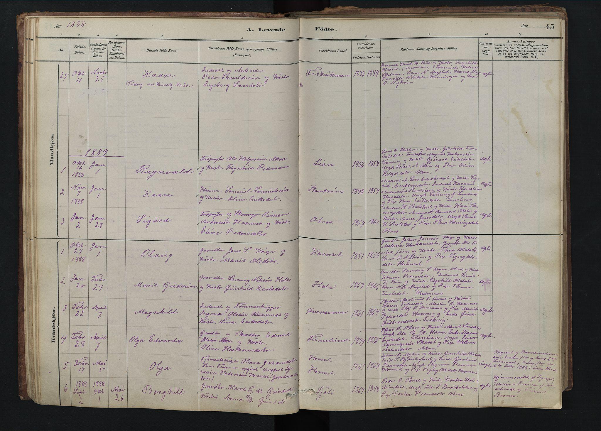 SAH, Rendalen prestekontor, H/Ha/Hab/L0009: Klokkerbok nr. 9, 1879-1902, s. 45