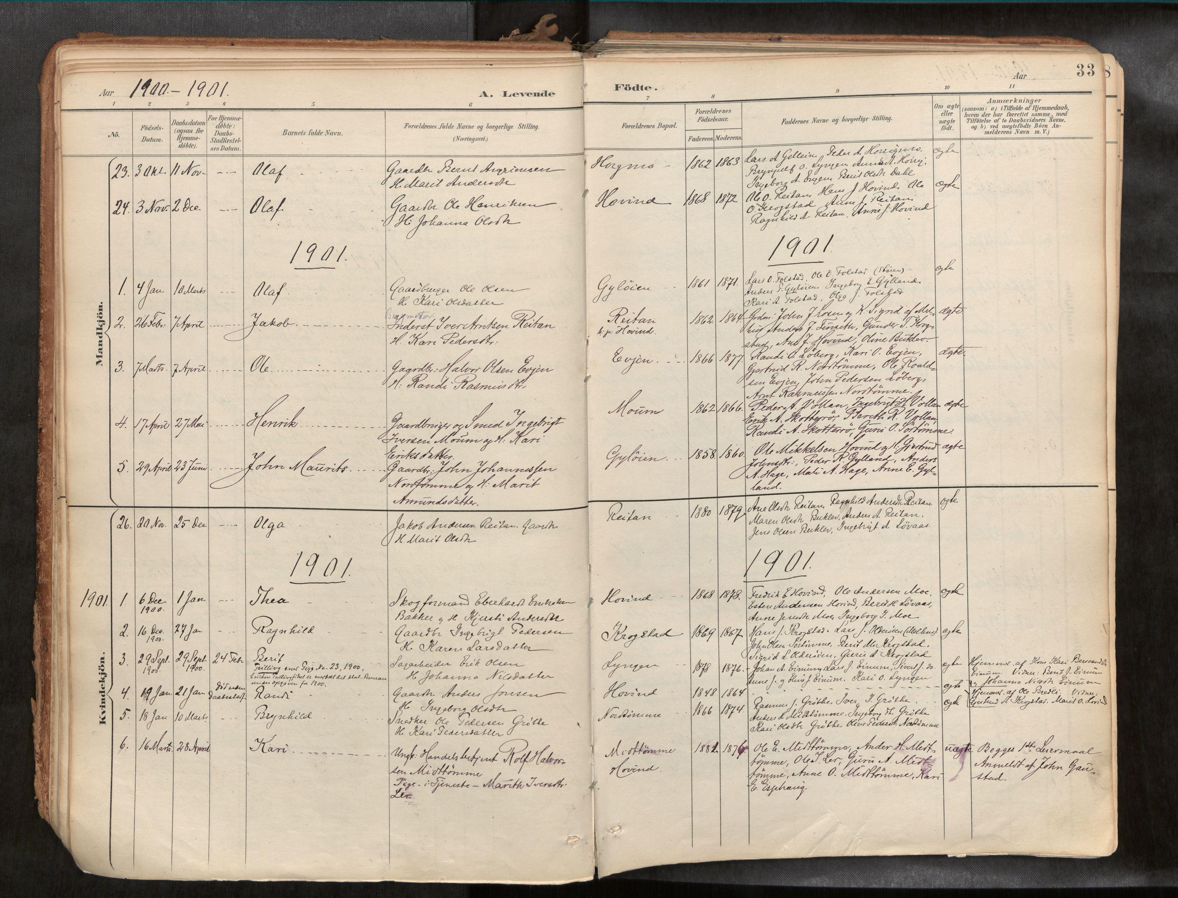 SAT, Ministerialprotokoller, klokkerbøker og fødselsregistre - Sør-Trøndelag, 692/L1105b: Ministerialbok nr. 692A06, 1891-1934, s. 33