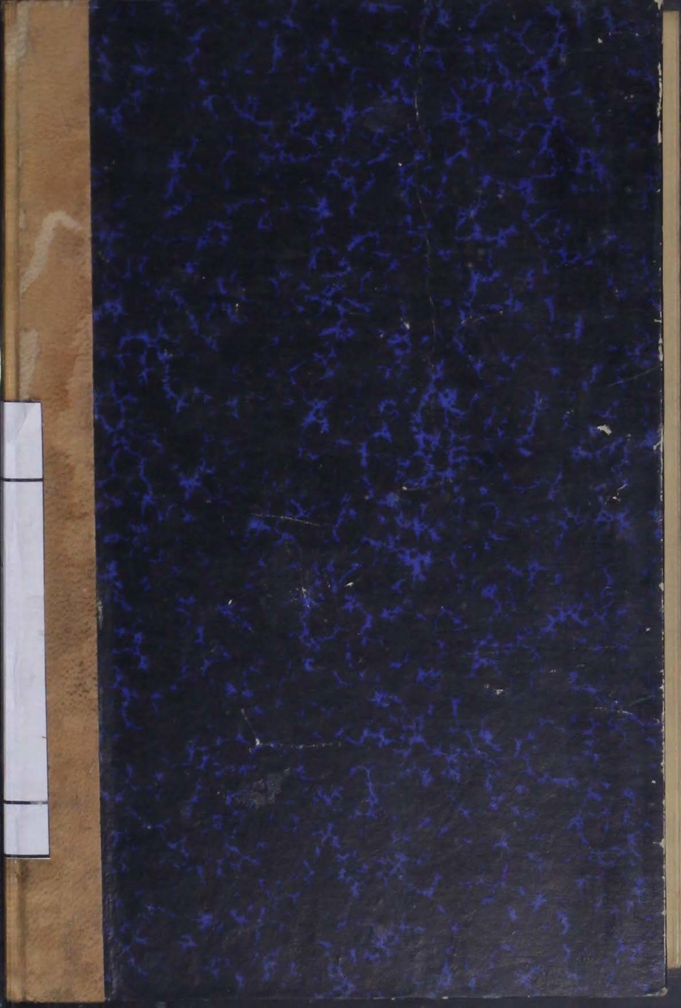 AIN, Narvik kommune. Formannskap , A/Ab/L0009: Møtebok, 1919