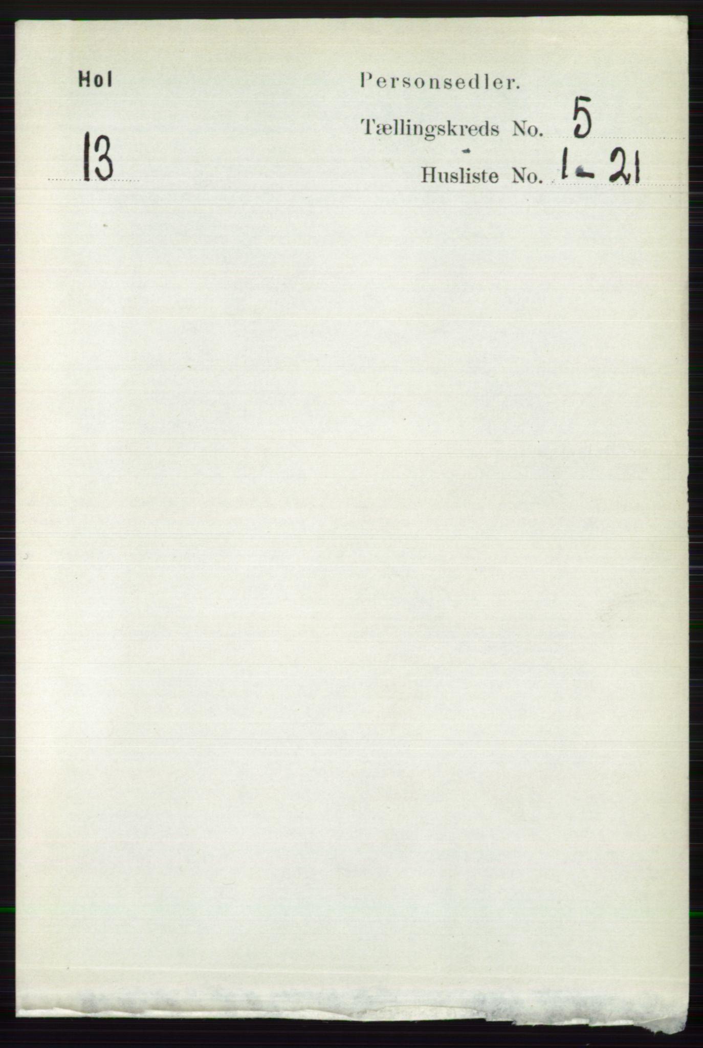 RA, Folketelling 1891 for 0620 Hol herred, 1891, s. 1464
