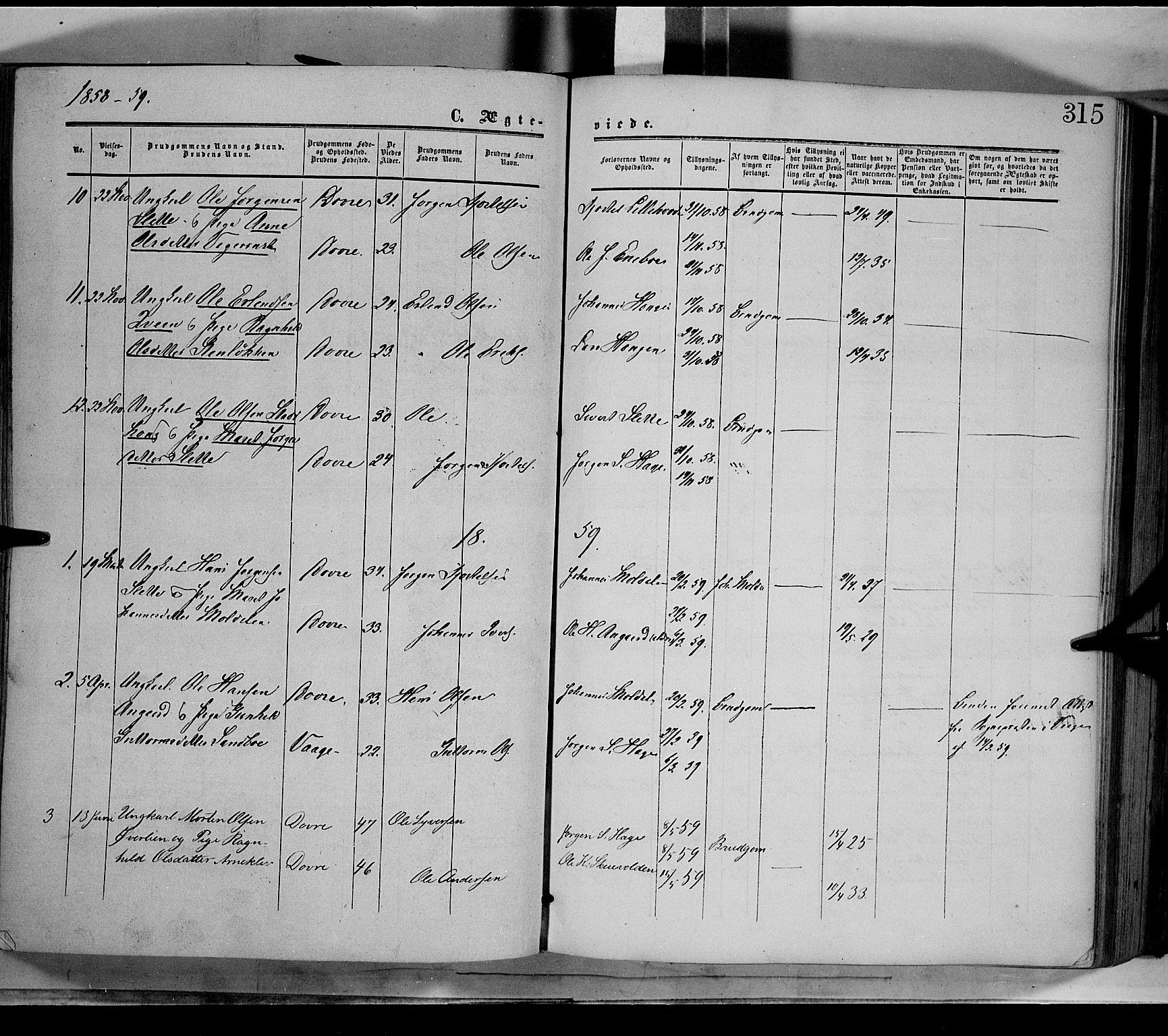 SAH, Dovre prestekontor, Ministerialbok nr. 1, 1854-1878, s. 315