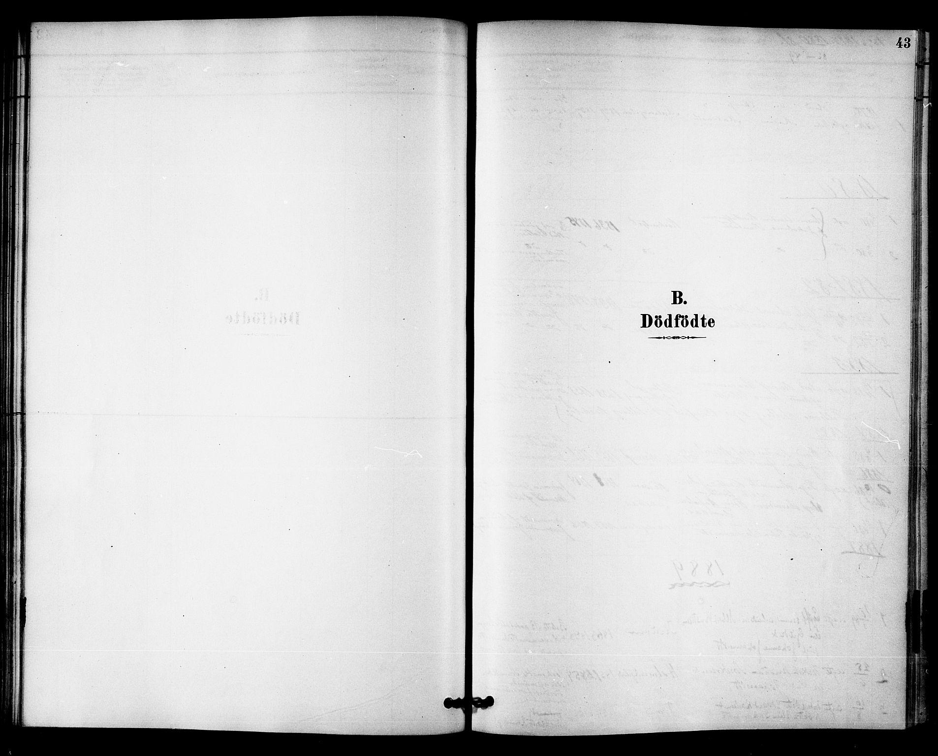 SAT, Ministerialprotokoller, klokkerbøker og fødselsregistre - Nord-Trøndelag, 745/L0429: Ministerialbok nr. 745A01, 1878-1894, s. 43