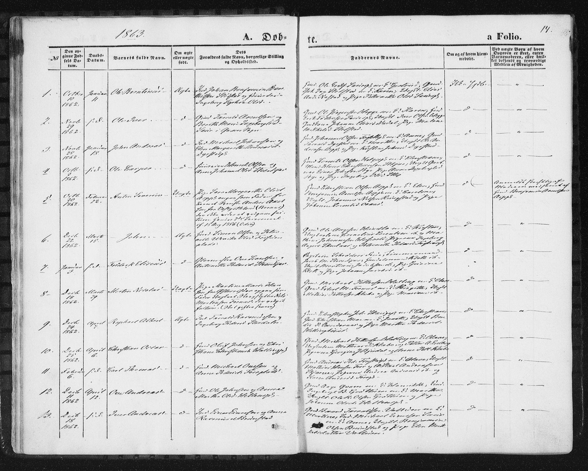 SAT, Ministerialprotokoller, klokkerbøker og fødselsregistre - Nord-Trøndelag, 746/L0447: Ministerialbok nr. 746A06, 1860-1877, s. 14