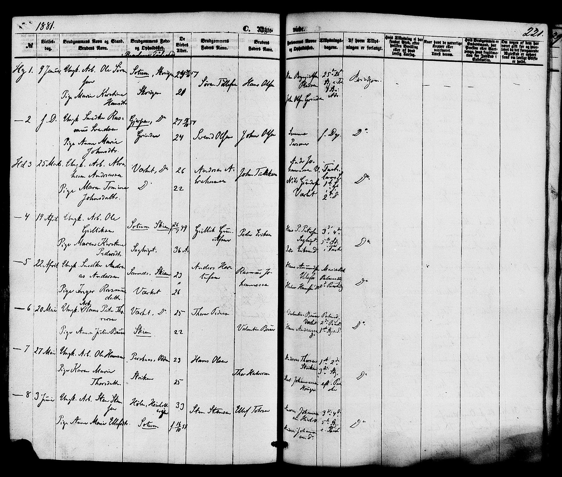SAKO, Holla kirkebøker, F/Fa/L0007: Ministerialbok nr. 7, 1869-1881, s. 221