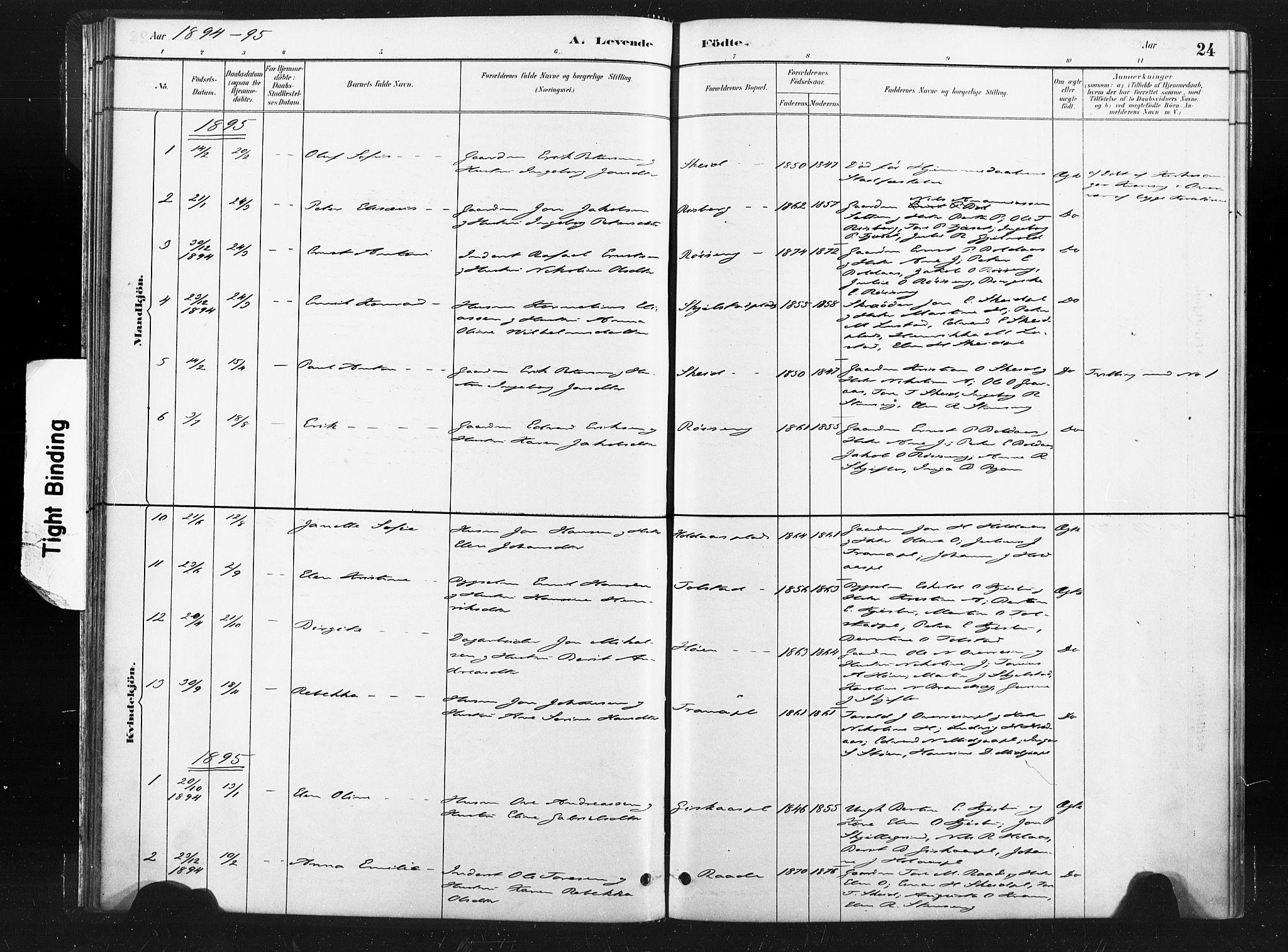 SAT, Ministerialprotokoller, klokkerbøker og fødselsregistre - Nord-Trøndelag, 736/L0361: Ministerialbok nr. 736A01, 1884-1906, s. 24