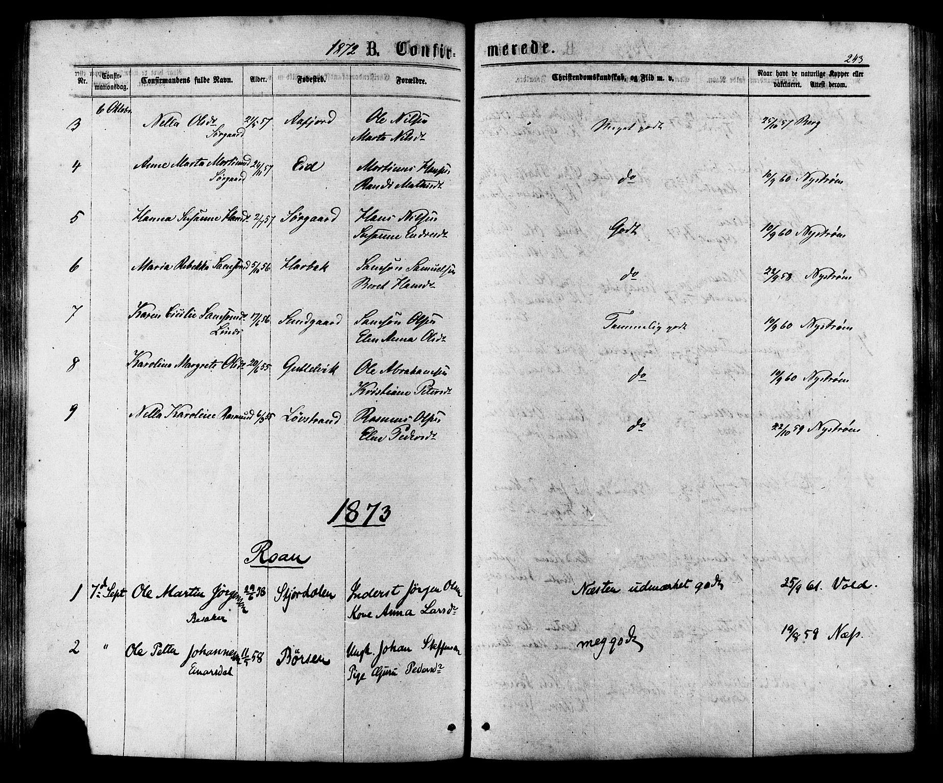 SAT, Ministerialprotokoller, klokkerbøker og fødselsregistre - Sør-Trøndelag, 657/L0706: Ministerialbok nr. 657A07, 1867-1878, s. 243