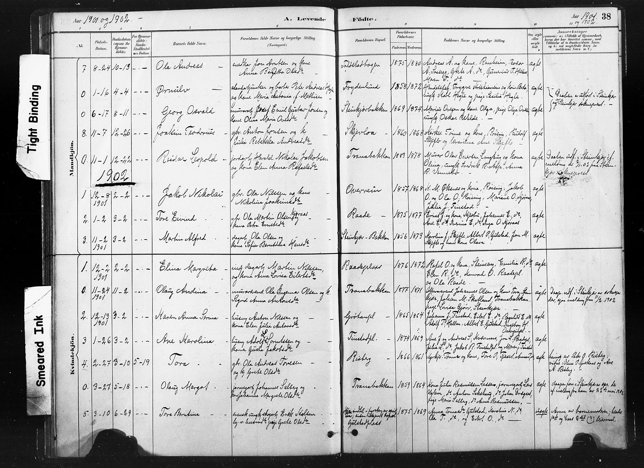 SAT, Ministerialprotokoller, klokkerbøker og fødselsregistre - Nord-Trøndelag, 736/L0361: Ministerialbok nr. 736A01, 1884-1906, s. 38
