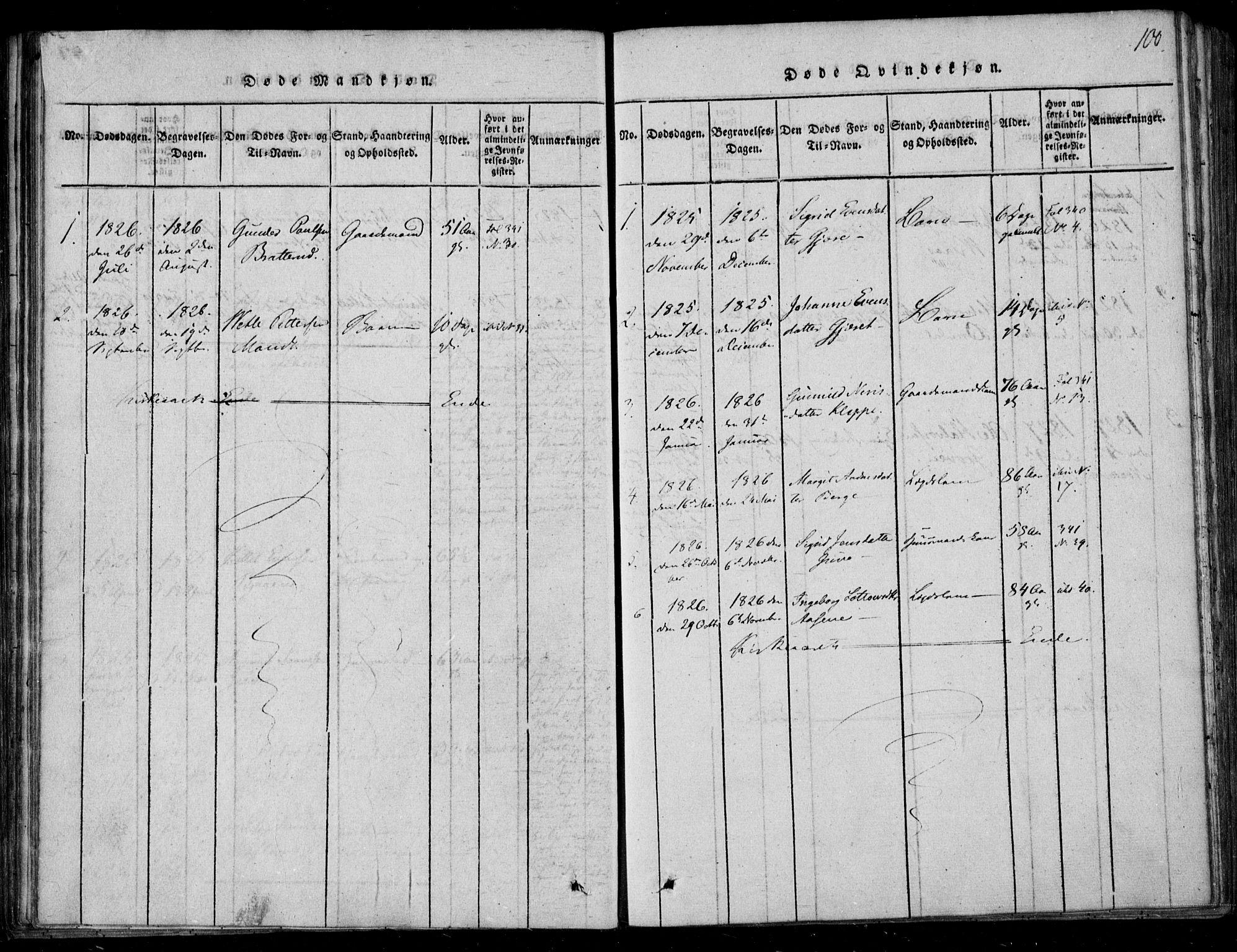 SAKO, Lårdal kirkebøker, F/Fb/L0001: Ministerialbok nr. II 1, 1815-1860, s. 100