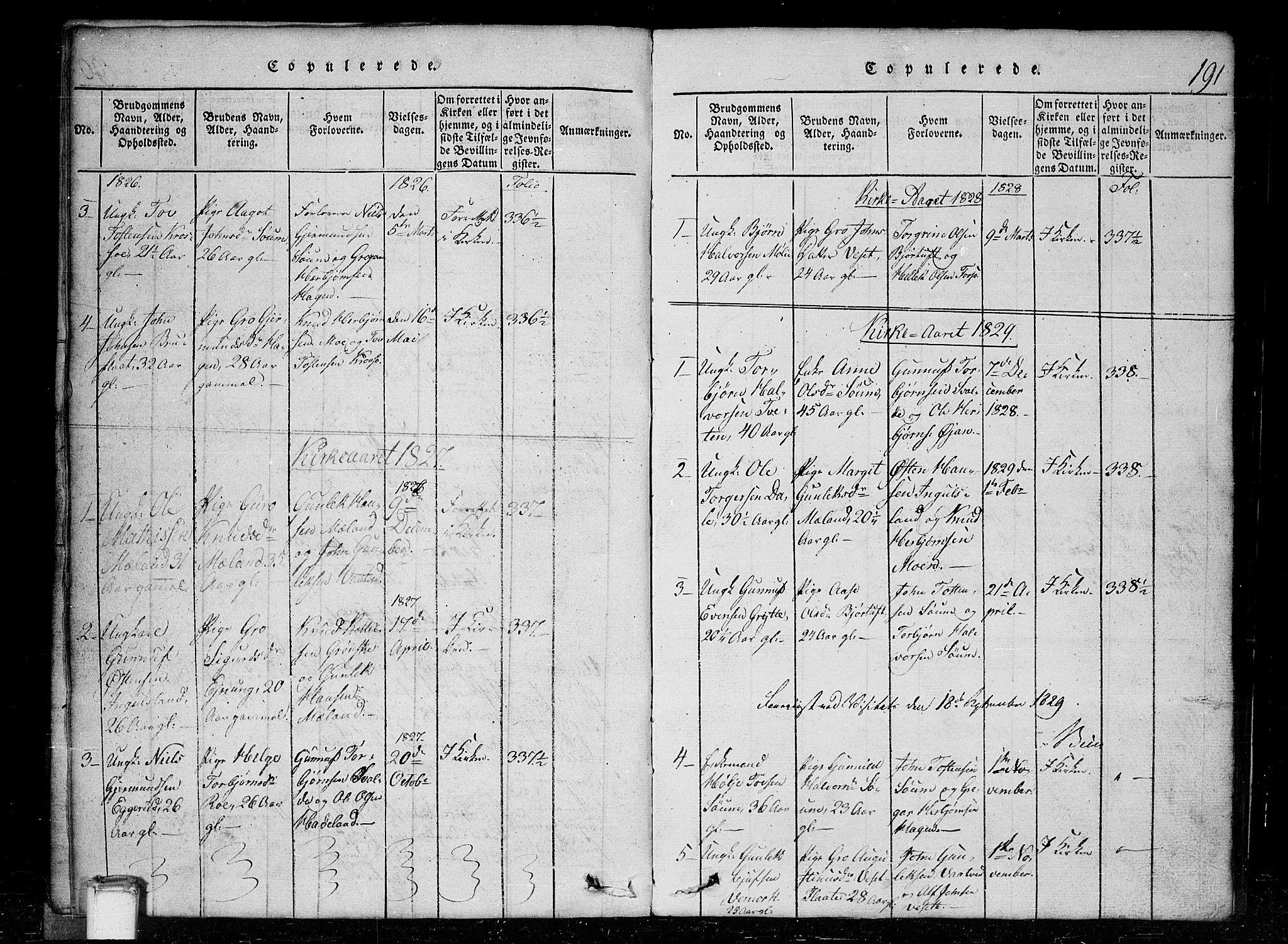 SAKO, Tinn kirkebøker, G/Gc/L0001: Klokkerbok nr. III 1, 1815-1879, s. 191