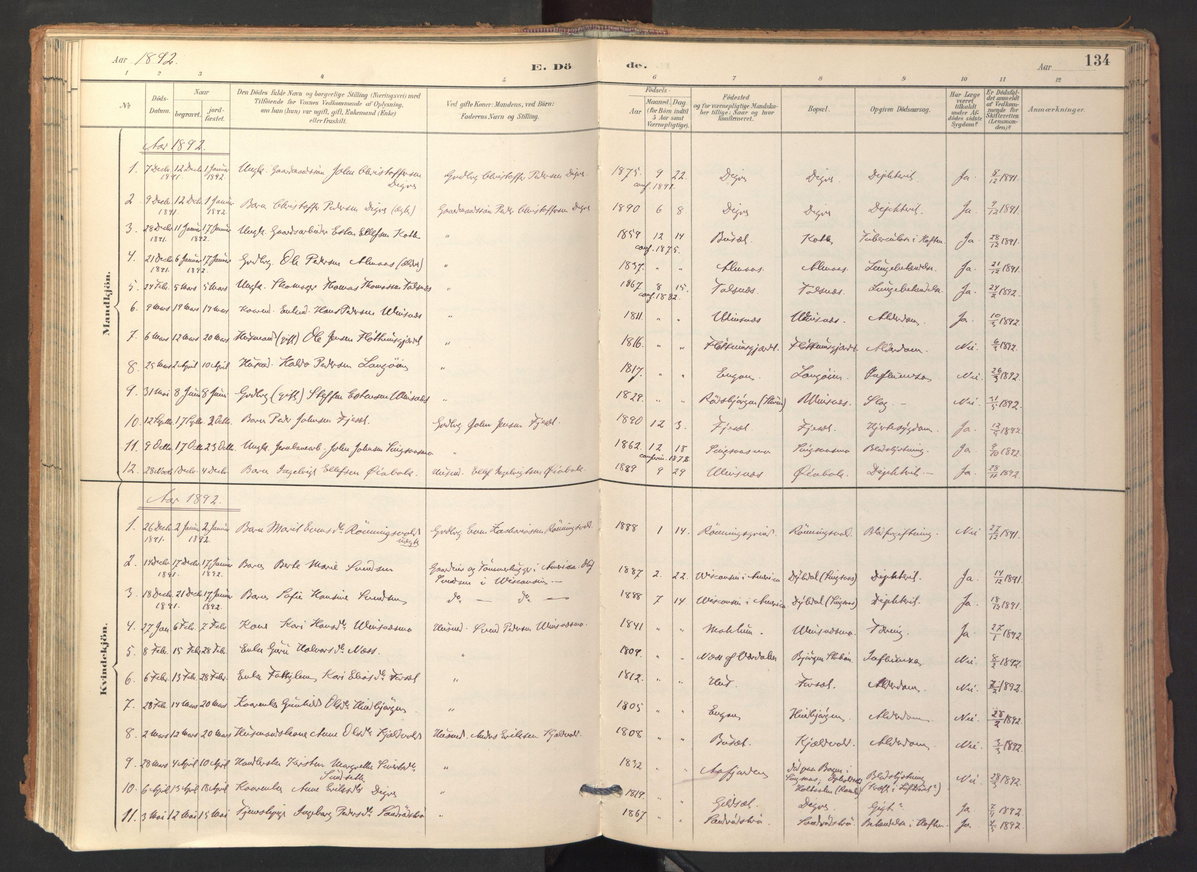 SAT, Ministerialprotokoller, klokkerbøker og fødselsregistre - Sør-Trøndelag, 688/L1025: Ministerialbok nr. 688A02, 1891-1909, s. 134