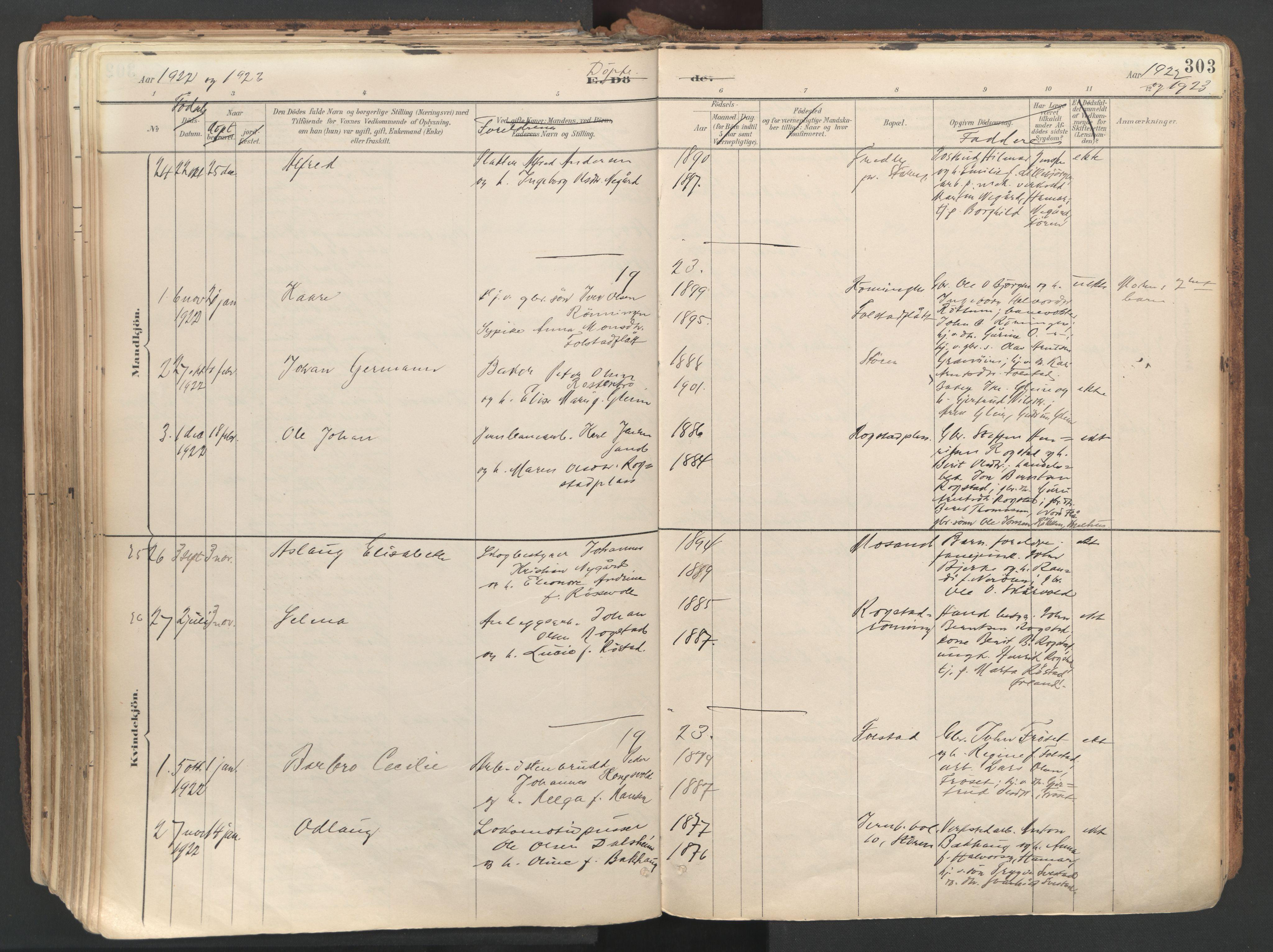 SAT, Ministerialprotokoller, klokkerbøker og fødselsregistre - Sør-Trøndelag, 687/L1004: Ministerialbok nr. 687A10, 1891-1923, s. 303