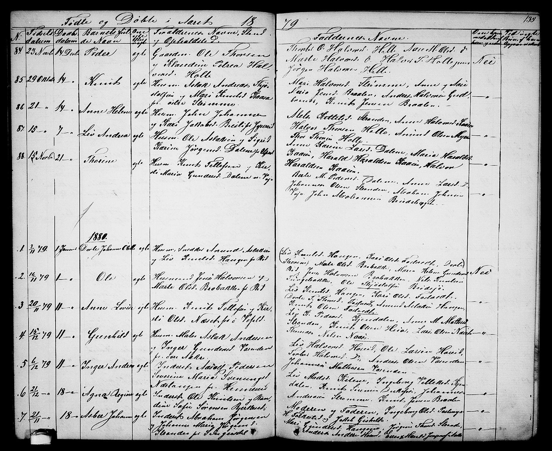 SAKO, Drangedal kirkebøker, G/Ga/L0002: Klokkerbok nr. I 2, 1856-1887, s. 135