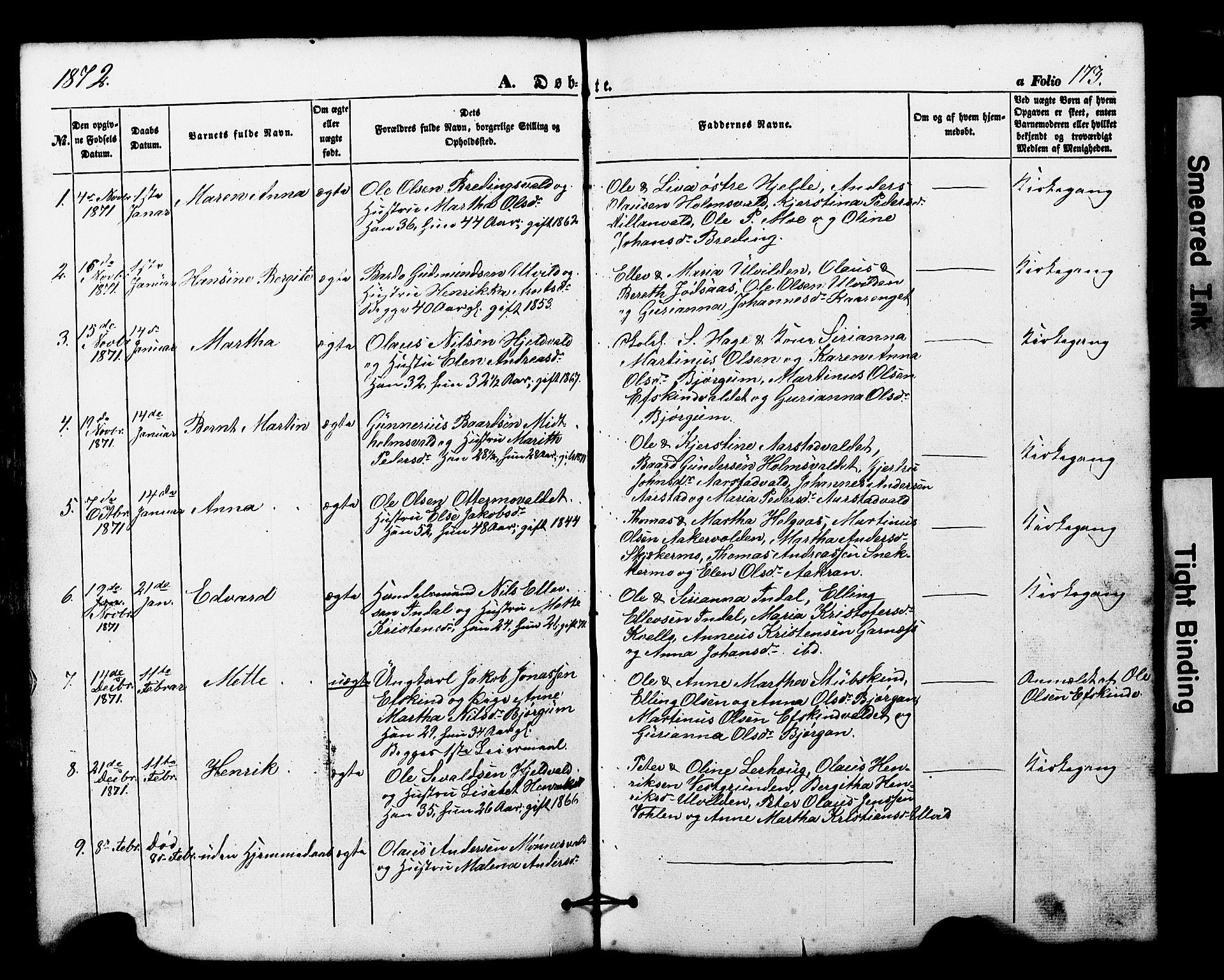 SAT, Ministerialprotokoller, klokkerbøker og fødselsregistre - Nord-Trøndelag, 724/L0268: Klokkerbok nr. 724C04, 1846-1878, s. 173