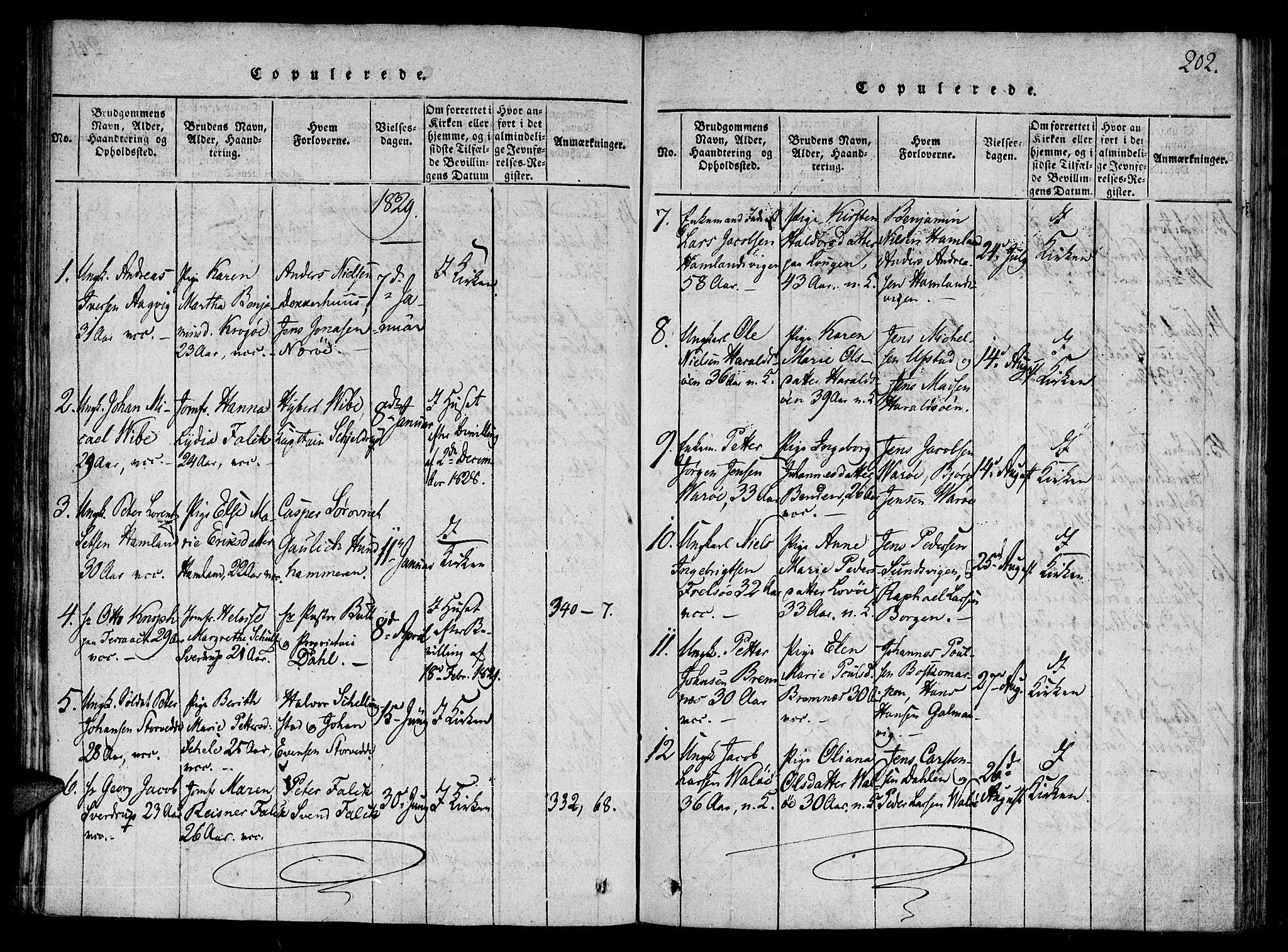SAT, Ministerialprotokoller, klokkerbøker og fødselsregistre - Nord-Trøndelag, 784/L0667: Ministerialbok nr. 784A03 /1, 1816-1829, s. 202