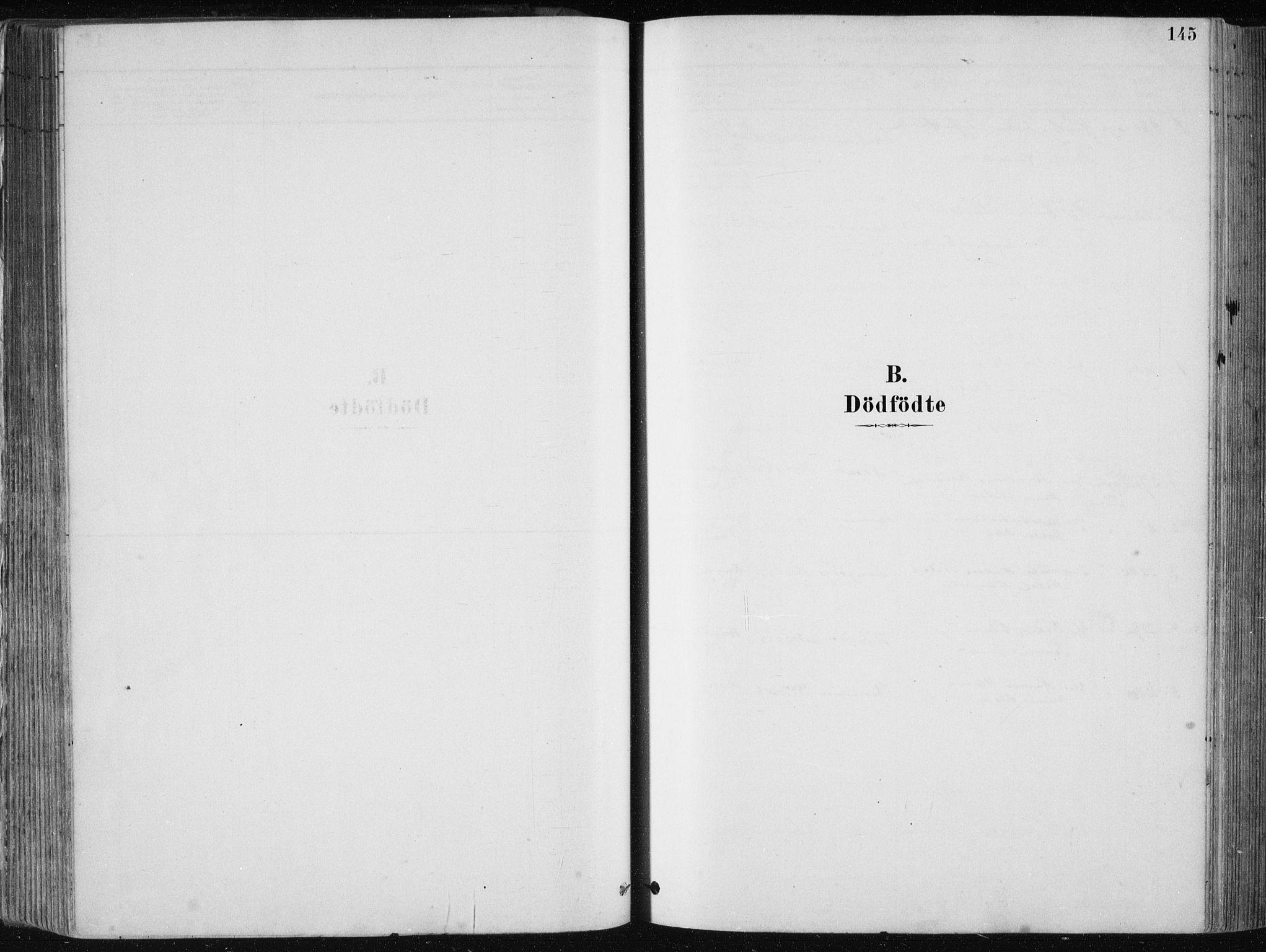 SAB, Fjell Sokneprestembete, H/Haa: Ministerialbok nr. A  8, 1878-1898, s. 145