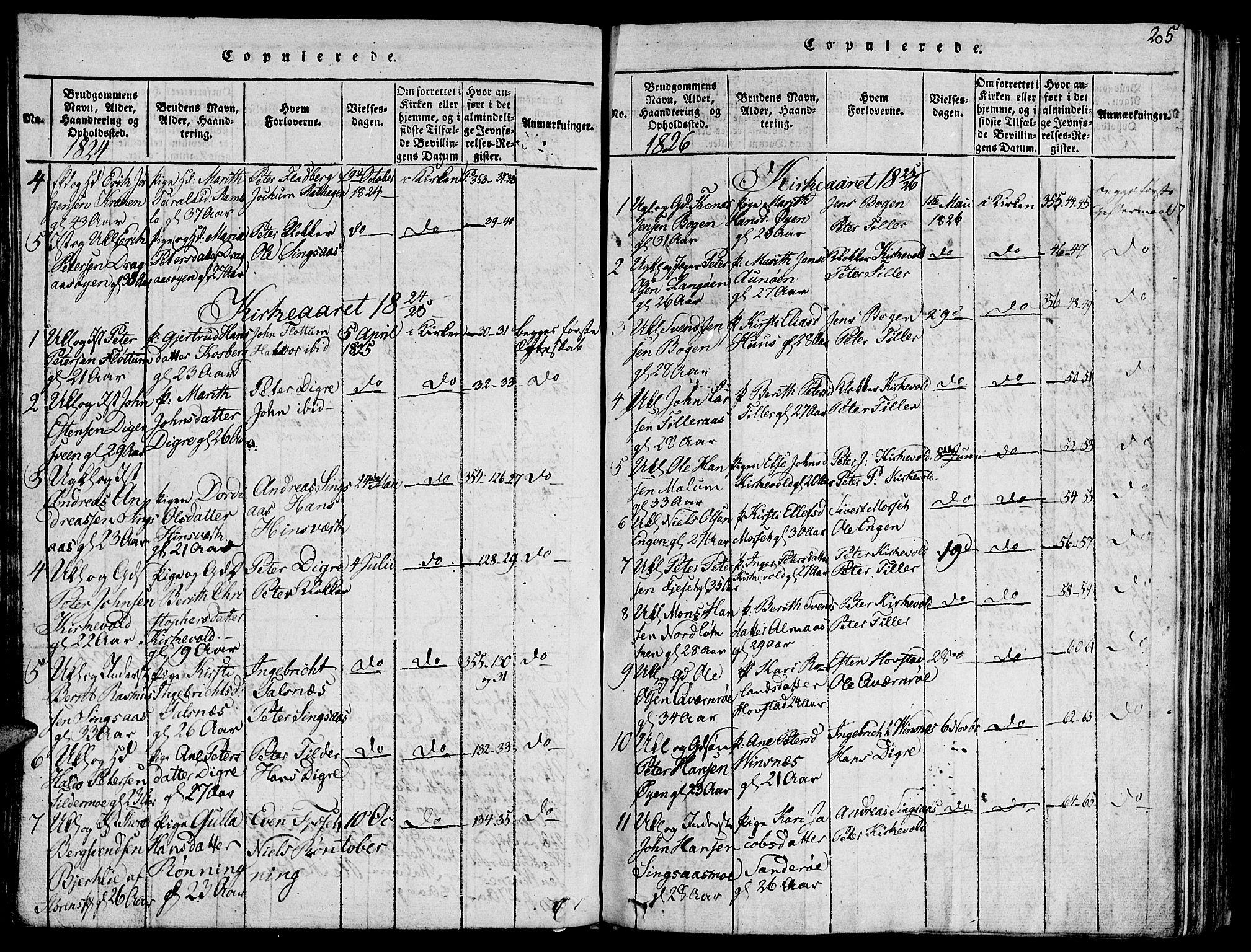 SAT, Ministerialprotokoller, klokkerbøker og fødselsregistre - Sør-Trøndelag, 685/L0955: Ministerialbok nr. 685A03 /2, 1817-1829, s. 205